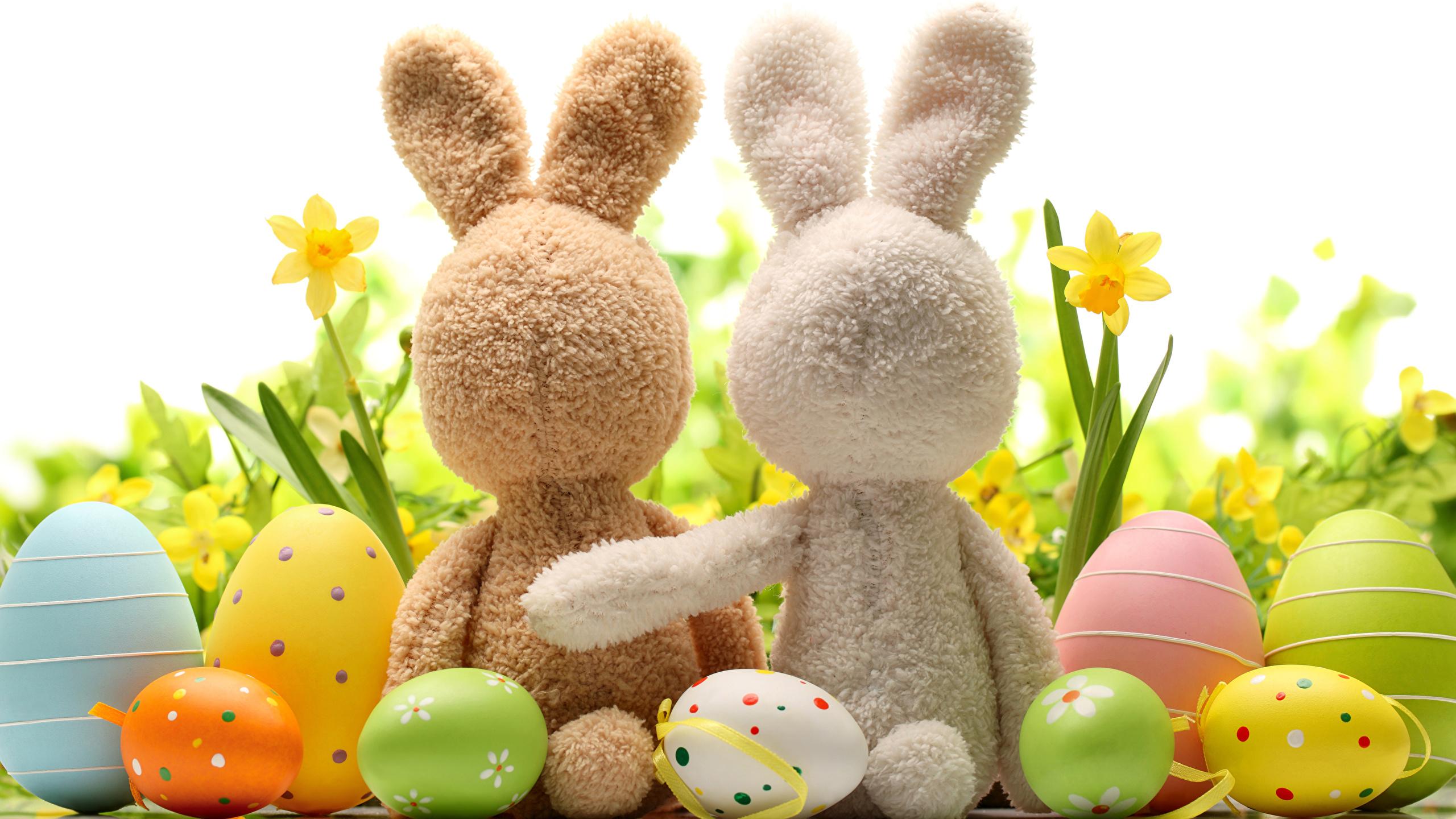 кролик с тюльпанами  № 1144671  скачать