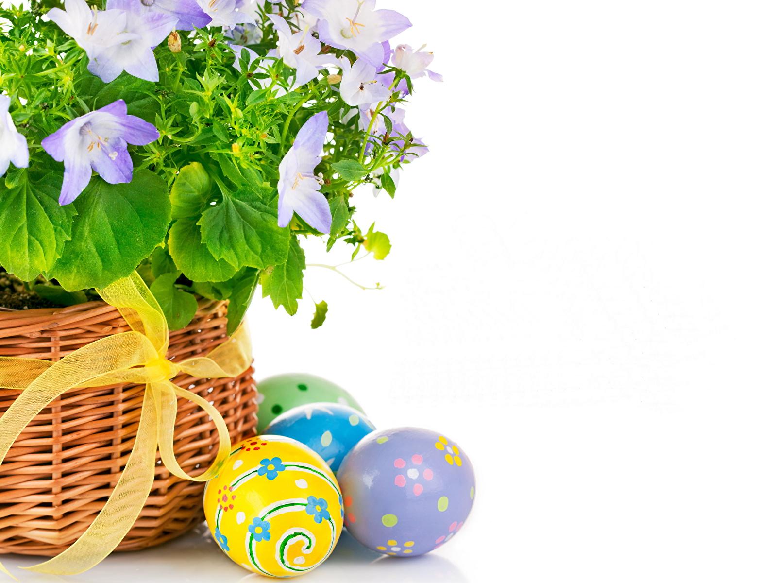 пасха яйца корзина  № 3922964  скачать