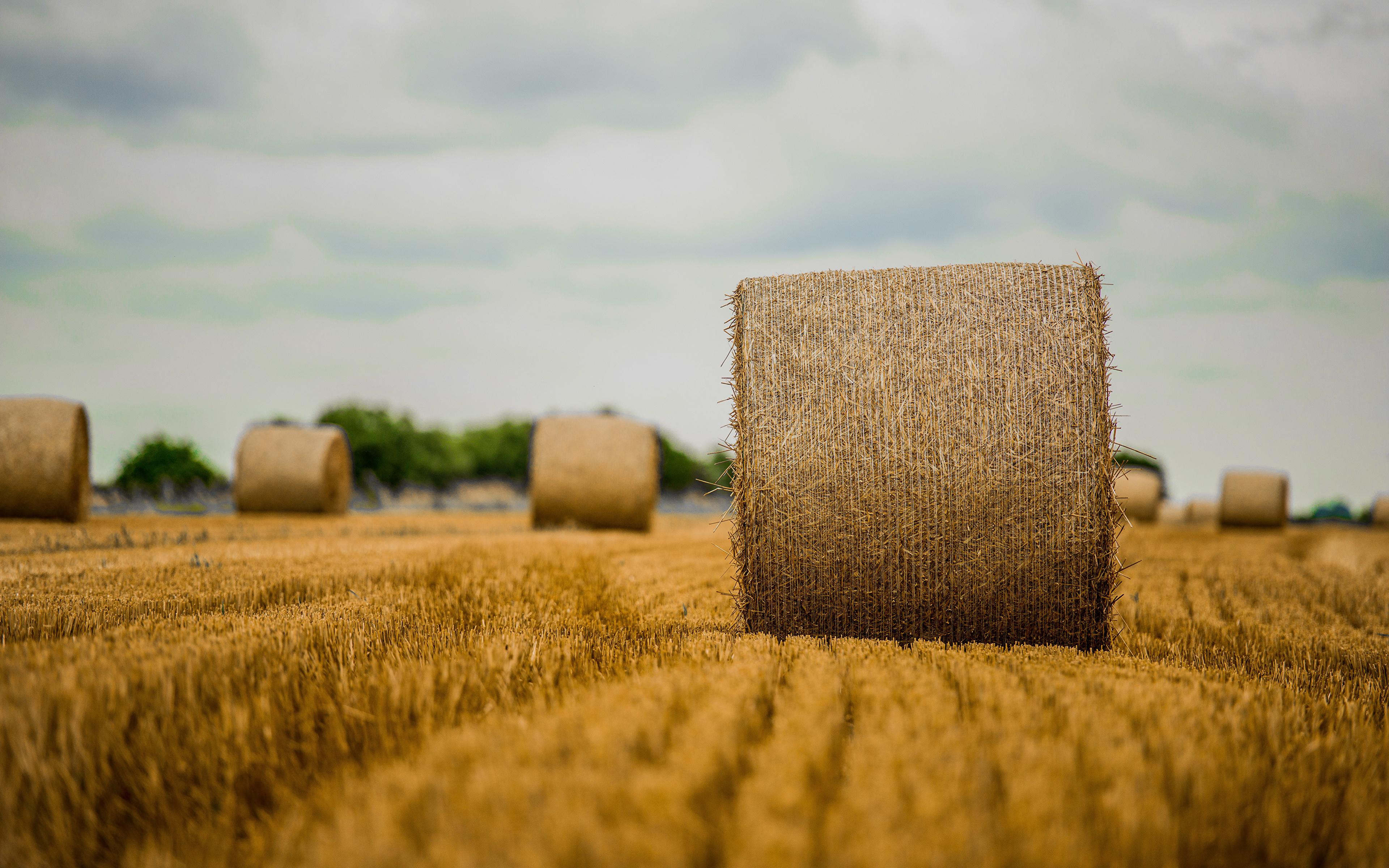 Сделать стог сена