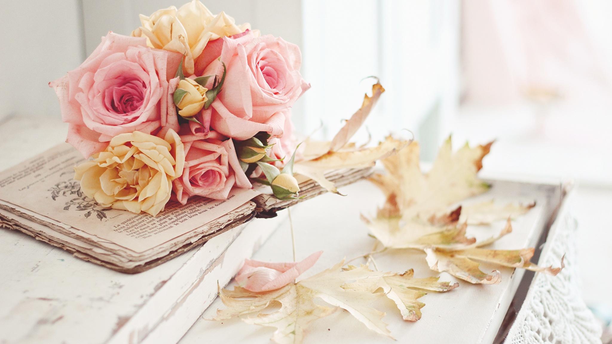 Цветок в книге  № 1489021  скачать
