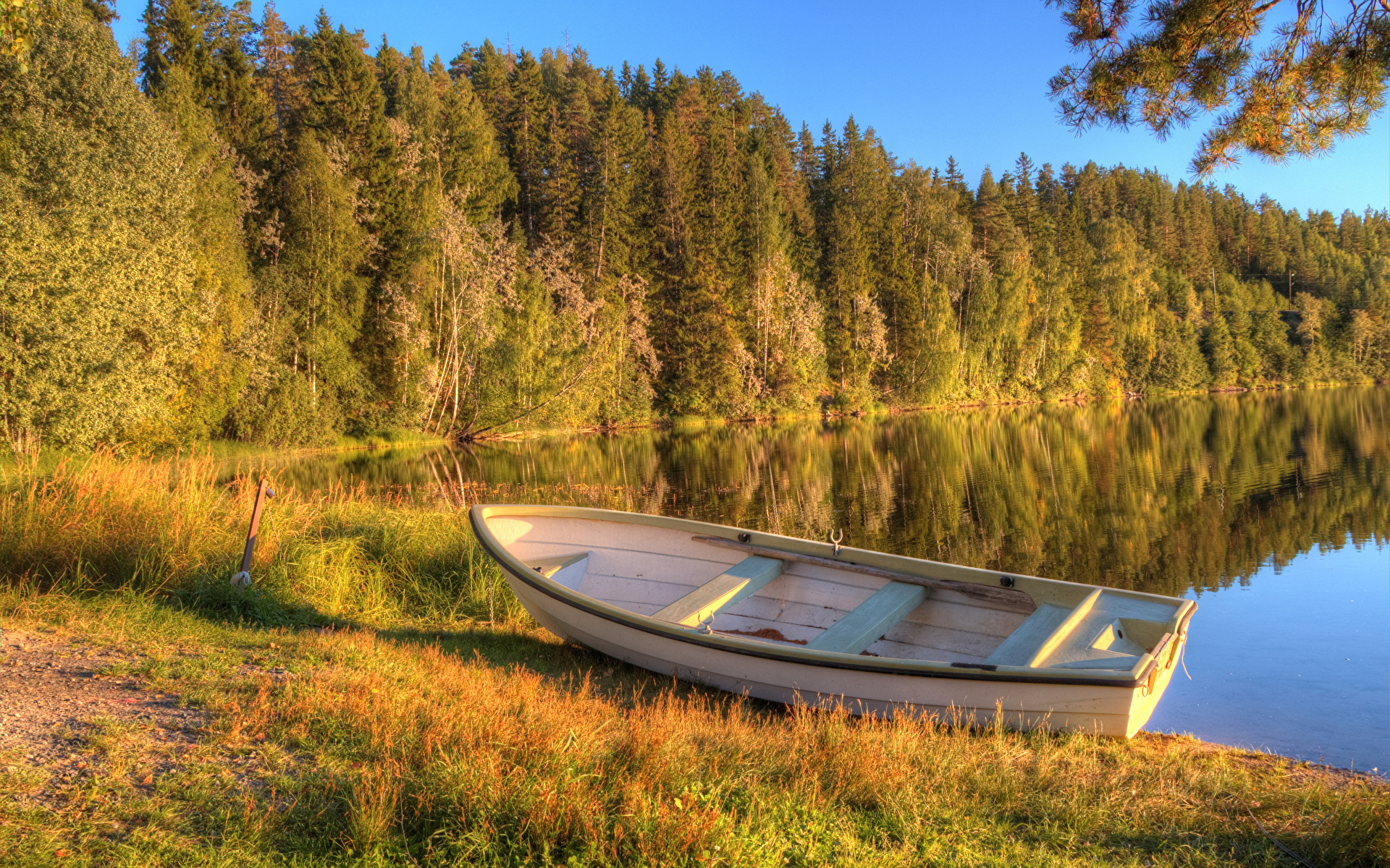 Лодка на берегу зеленого озера  № 2493033 загрузить