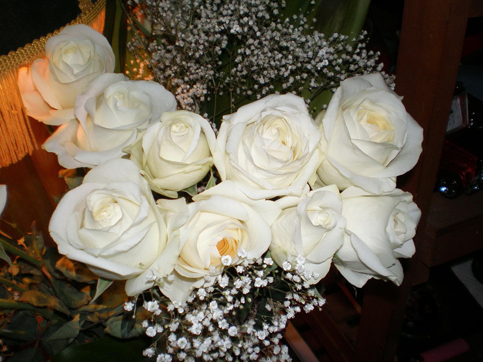 Белые розы в подарок это 1000