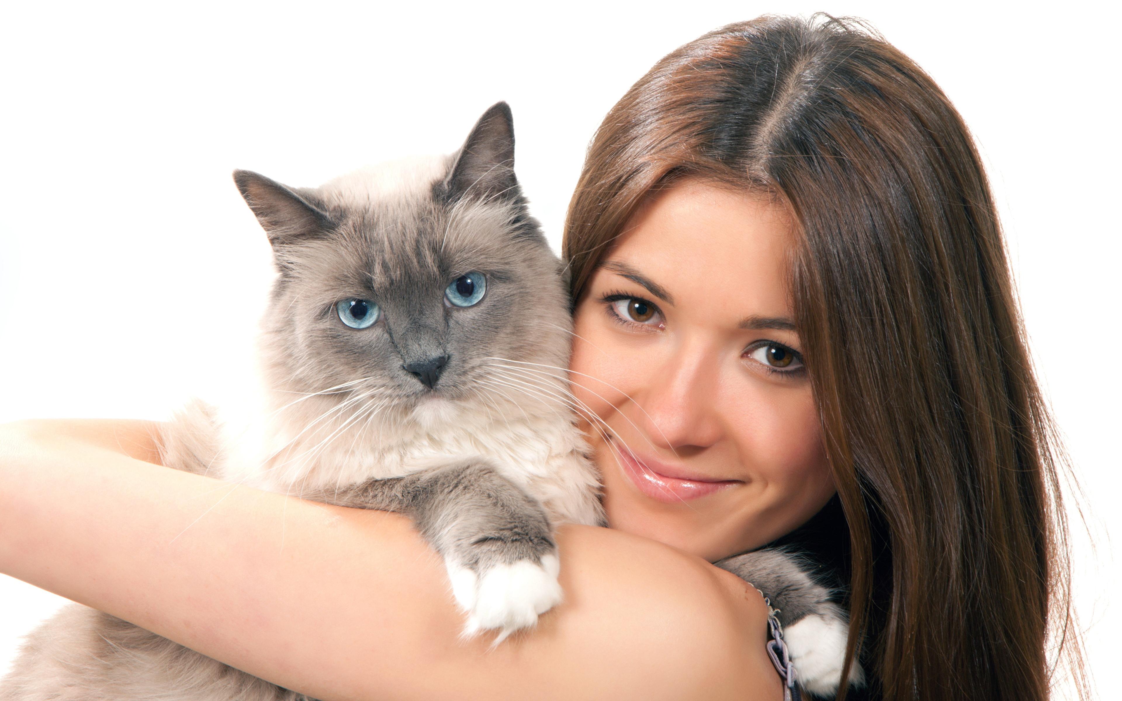 девушка котенок лицо взгляд  № 3597587  скачать