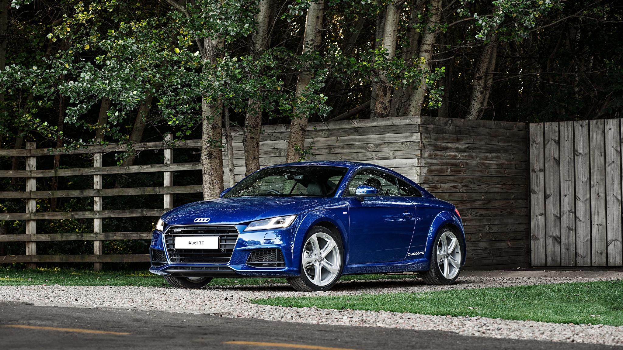 голубая Audi  № 2421717 загрузить
