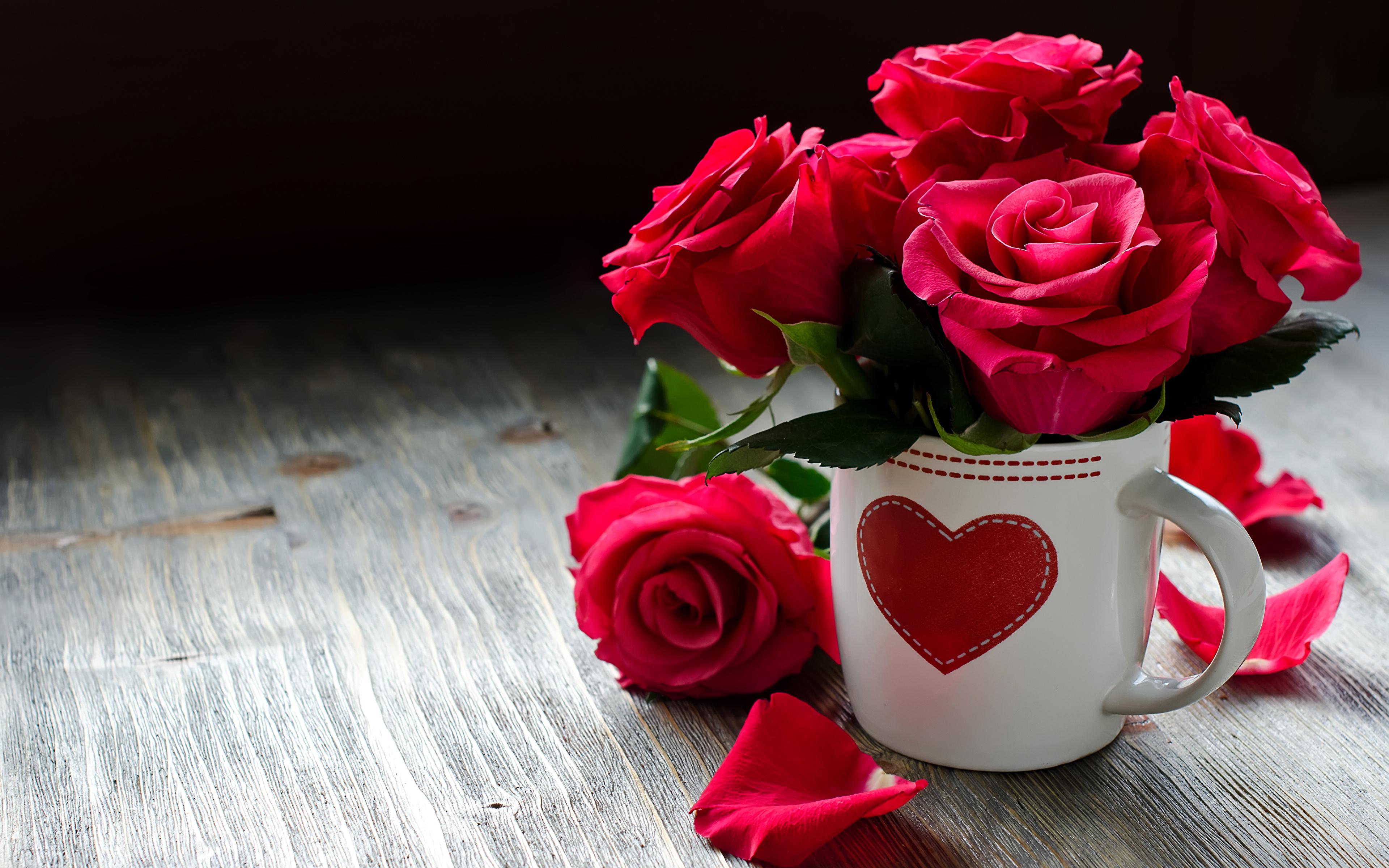 Beautiful wallpapers flowers roses