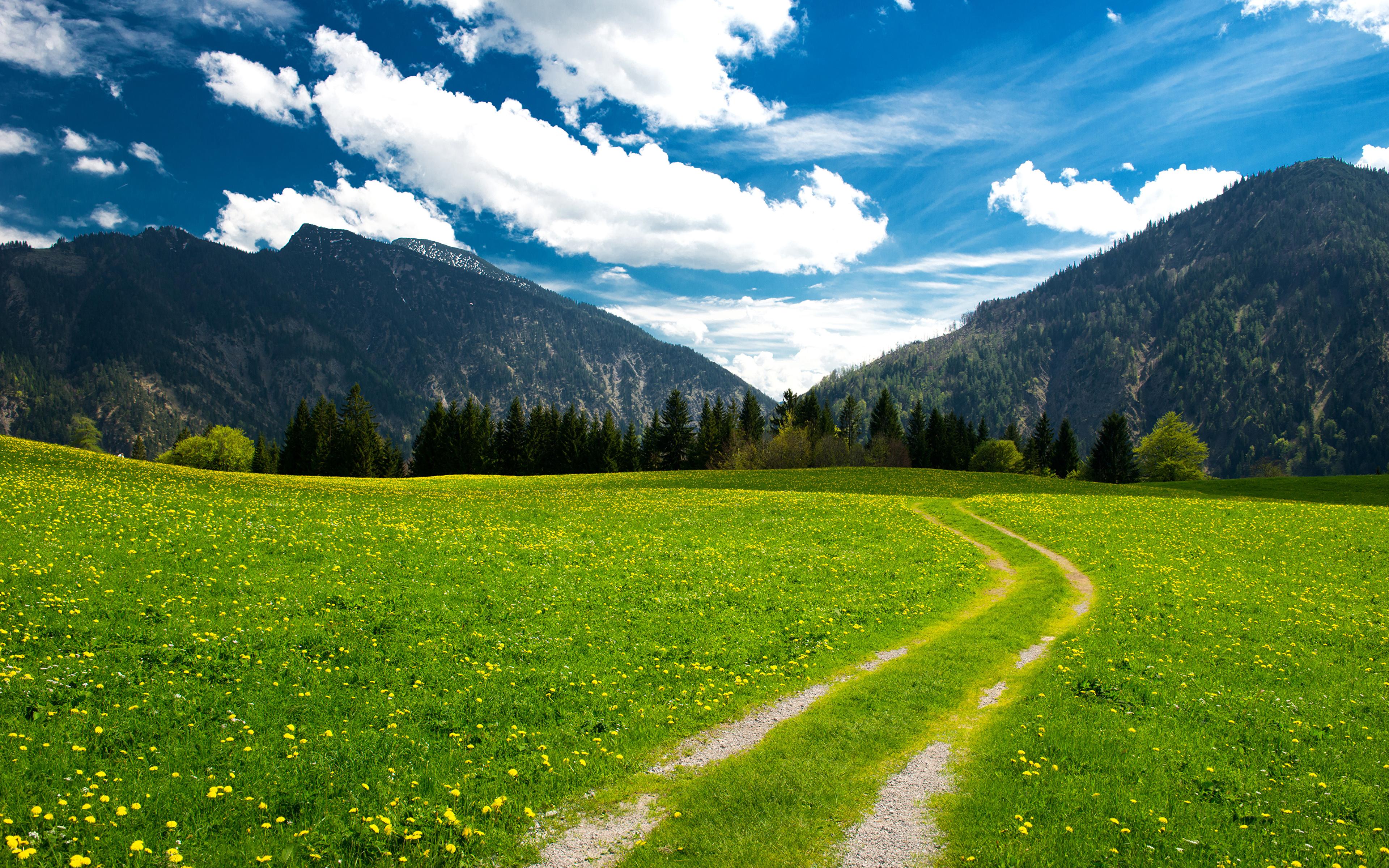 поляна цветы трава холмы горы glade flowers grass hills mountains  № 1829270  скачать