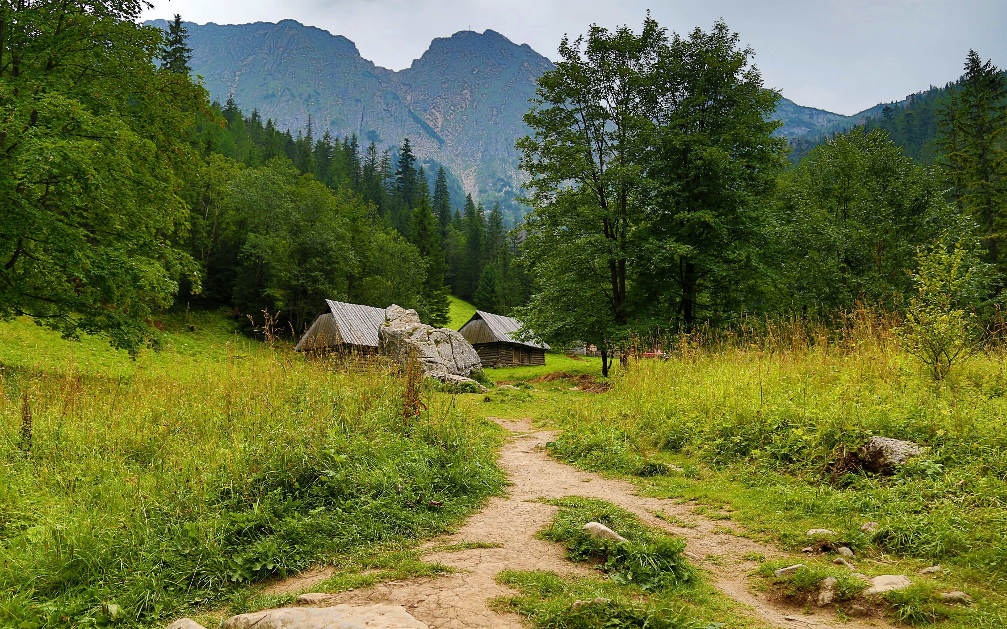 Pieniny, Kluszkowce, Tatra Mountains, Poland  № 8197 без смс