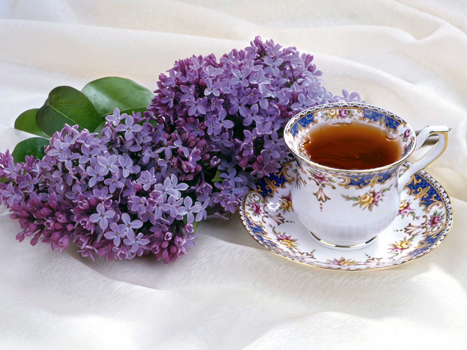 природа цветы сирень сахар блюдо  № 1154311 загрузить