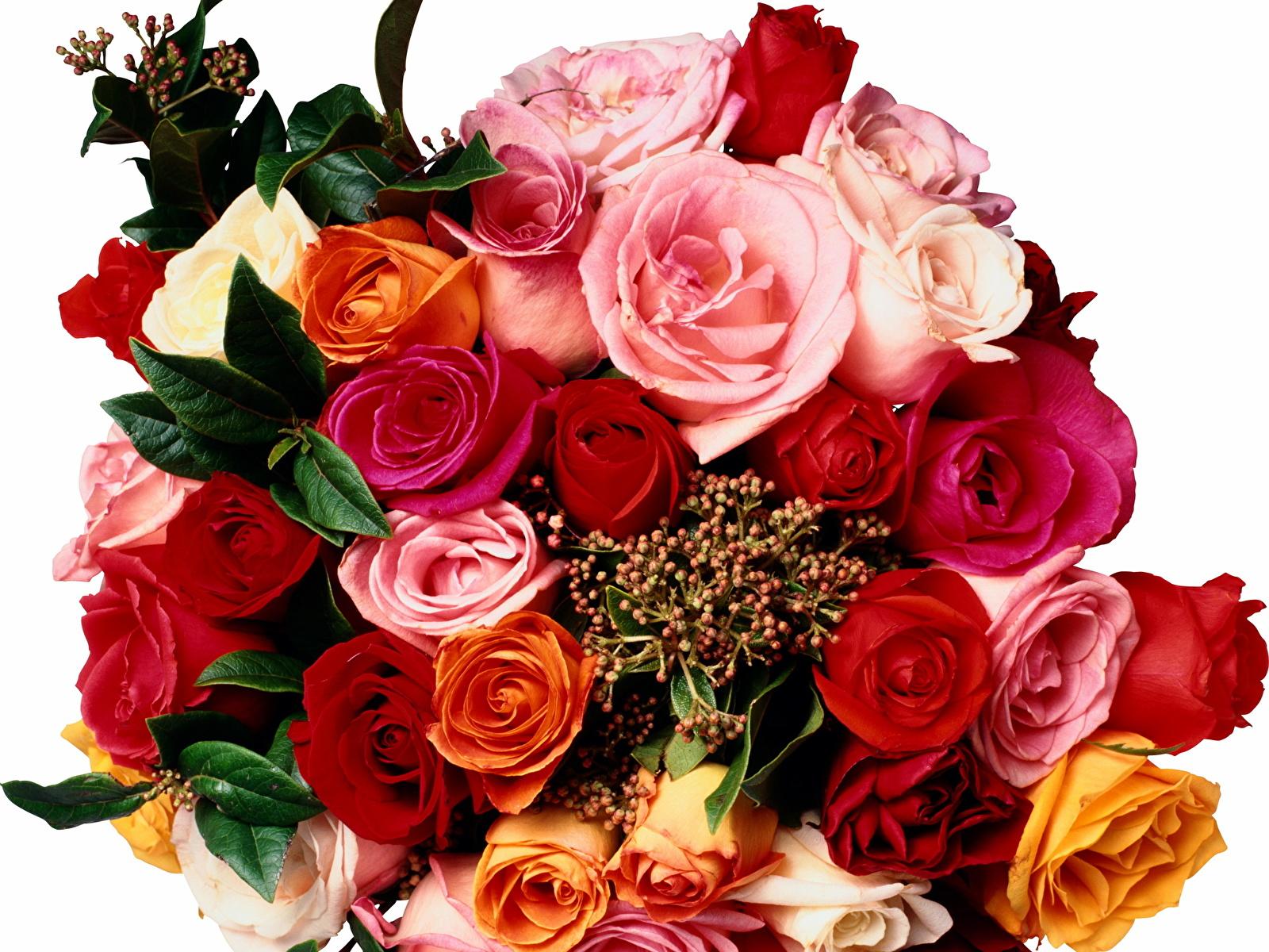 Фото букетов роз с поздравлениями