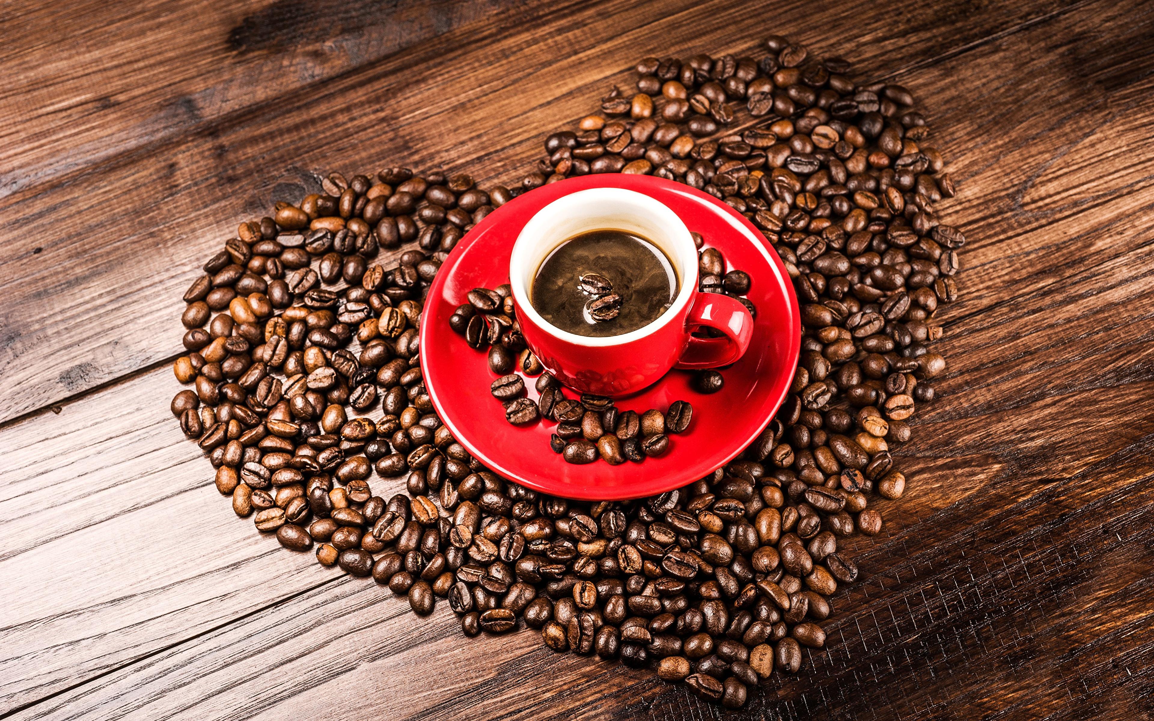 Обои для рабочего стола чашка с кофе