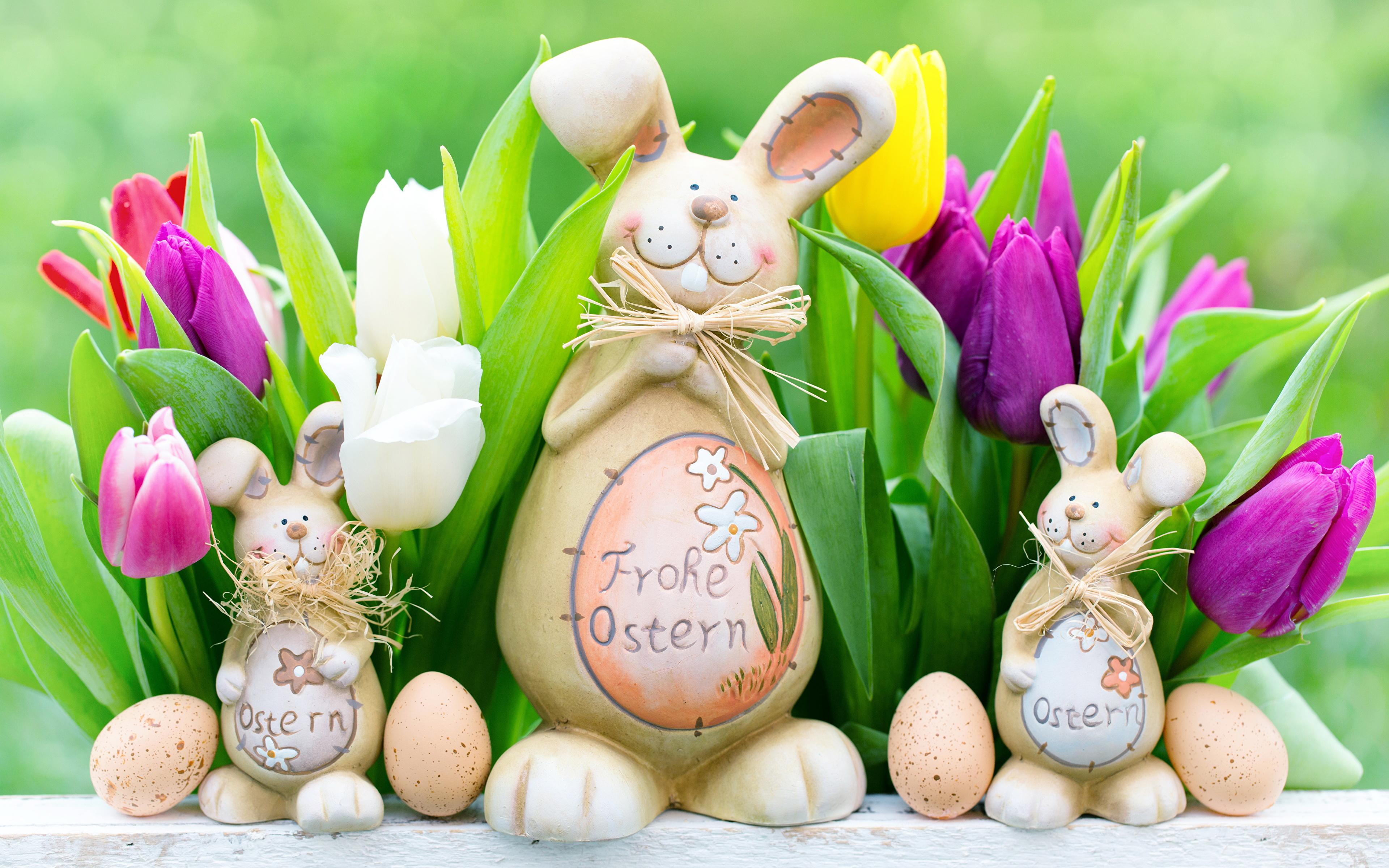 природа кролик цветы тюльпаны яйца пасха  № 271762 без смс