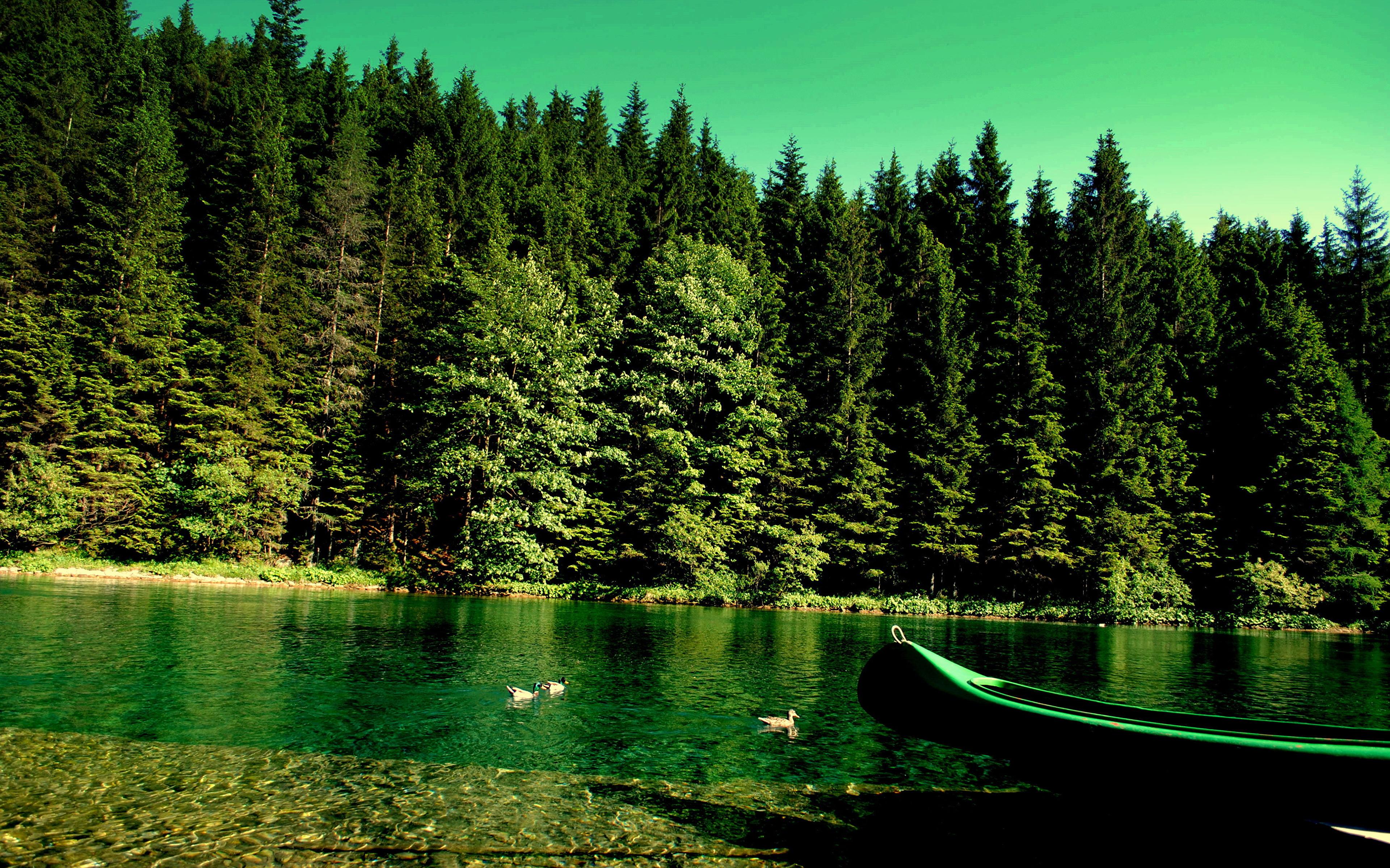 Лодка на берегу зеленого озера  № 2493055  скачать