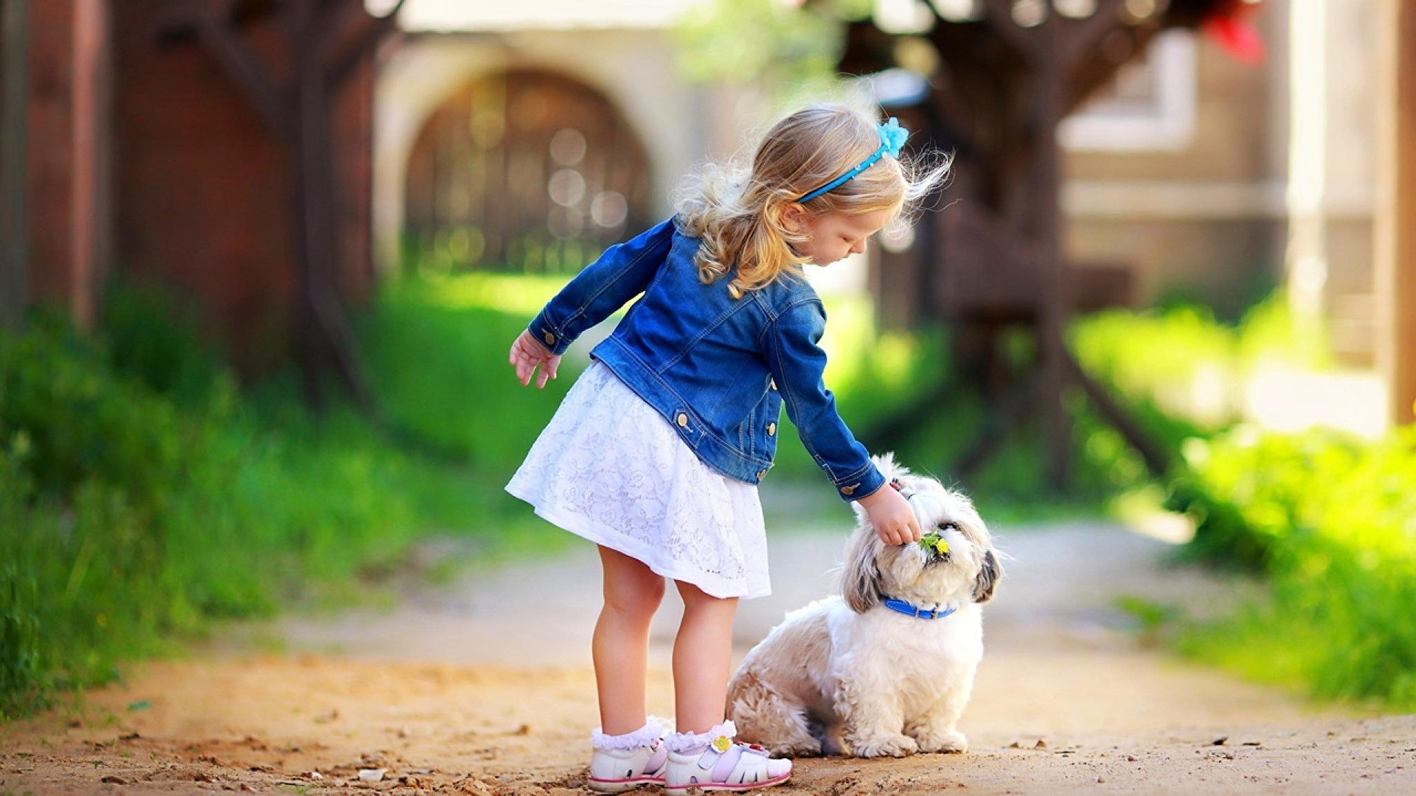 природа животные собака девочка жизнь nature animals dog girl life  № 3951002 без смс