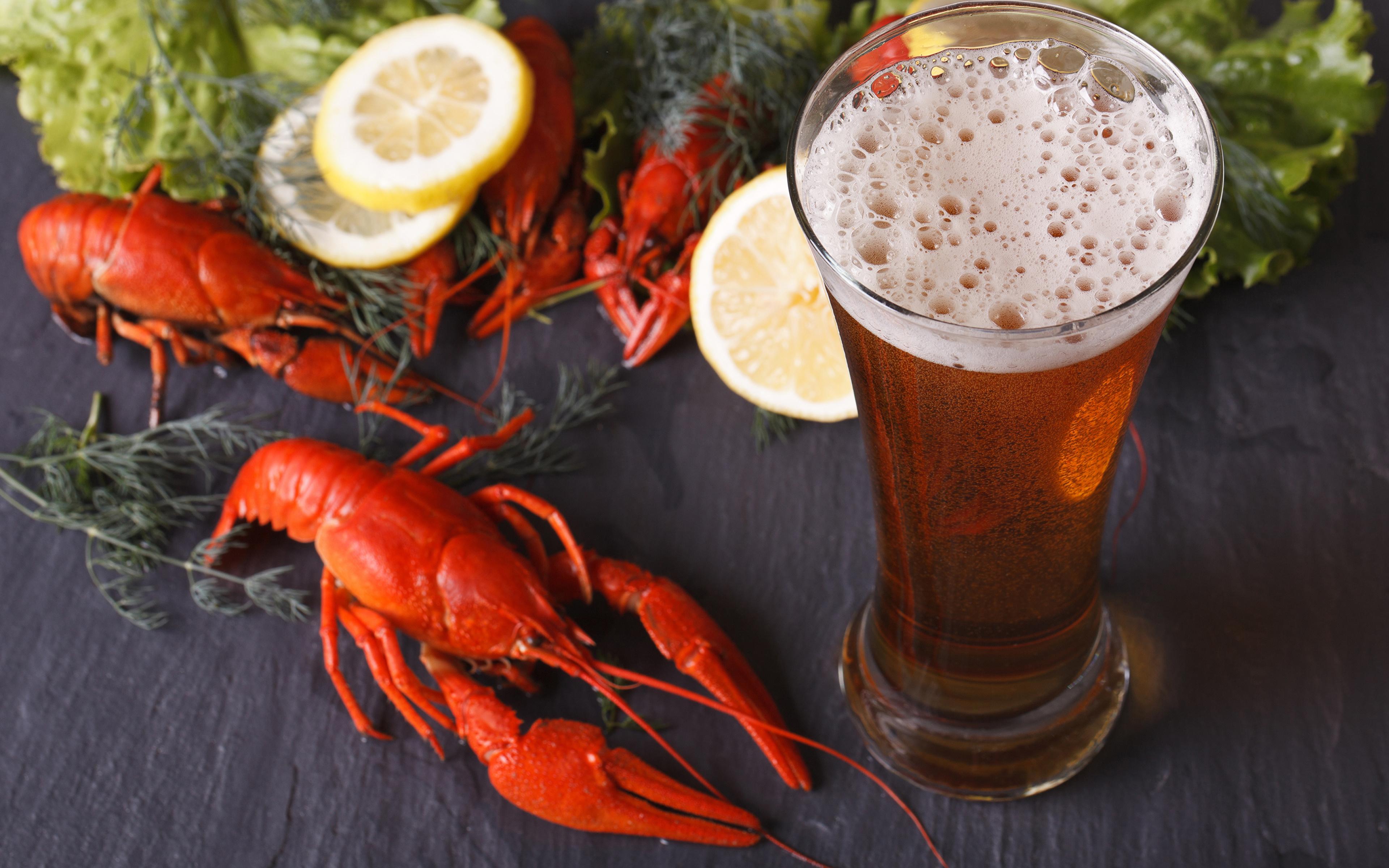 холодное пиво с раками  № 449407  скачать