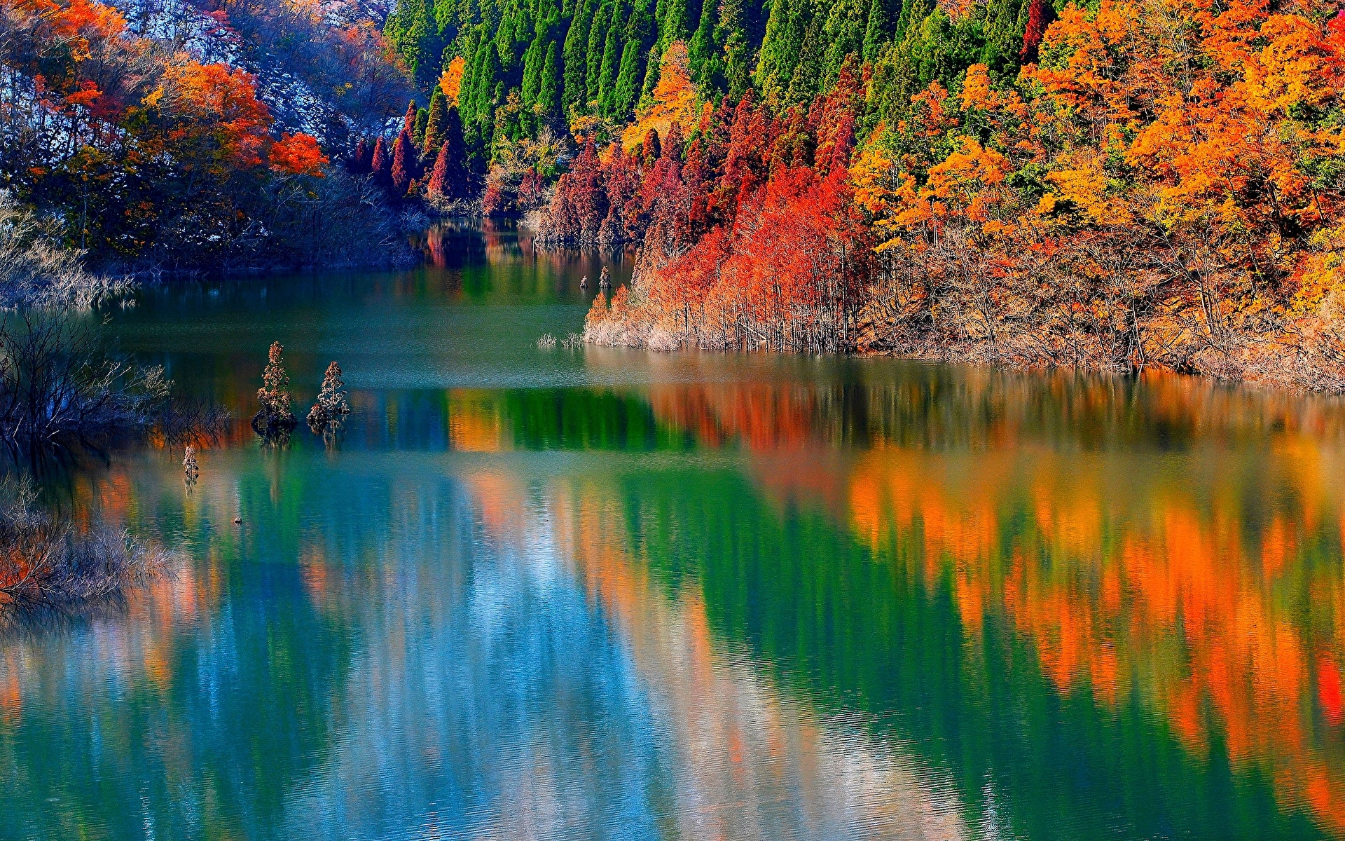обои на рабочий стол осень природа река озеро лес № 241633  скачать