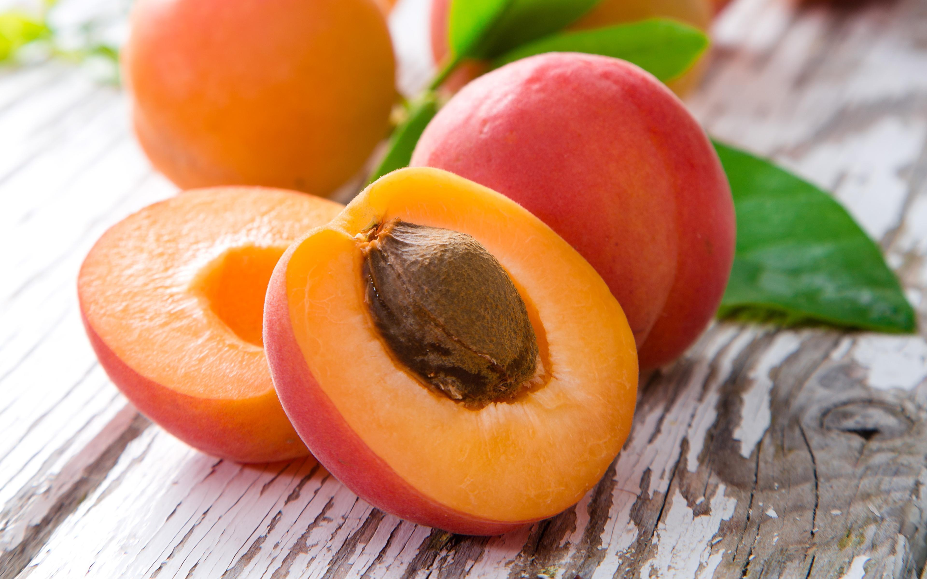 Как из косточки вырастить абрикос? Видео и пошаговая 69
