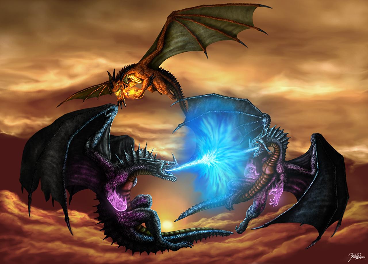 Три дракони фото 13 фотография