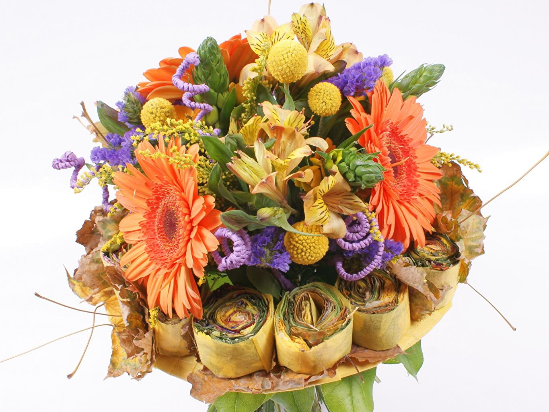 Какие цветы на 1 сентября подарить учителю? Советы флориста 8