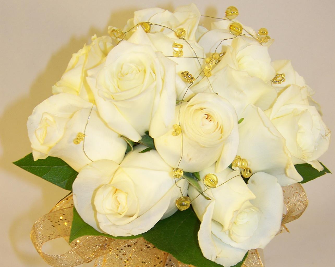 Розы Букеты Белый Цветы