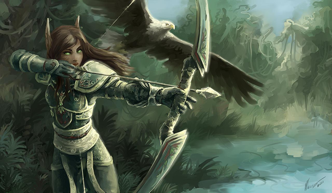 Fantasy ranger wallpaper