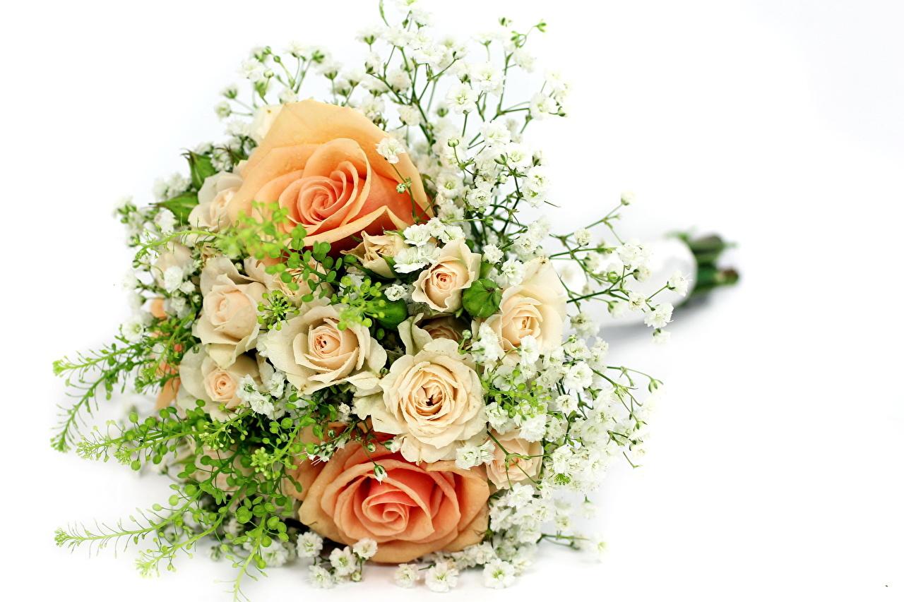 Цветы для сестры картинки 5