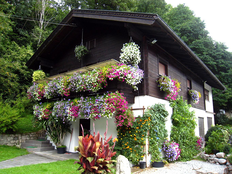 Фото красивого дома в цветах