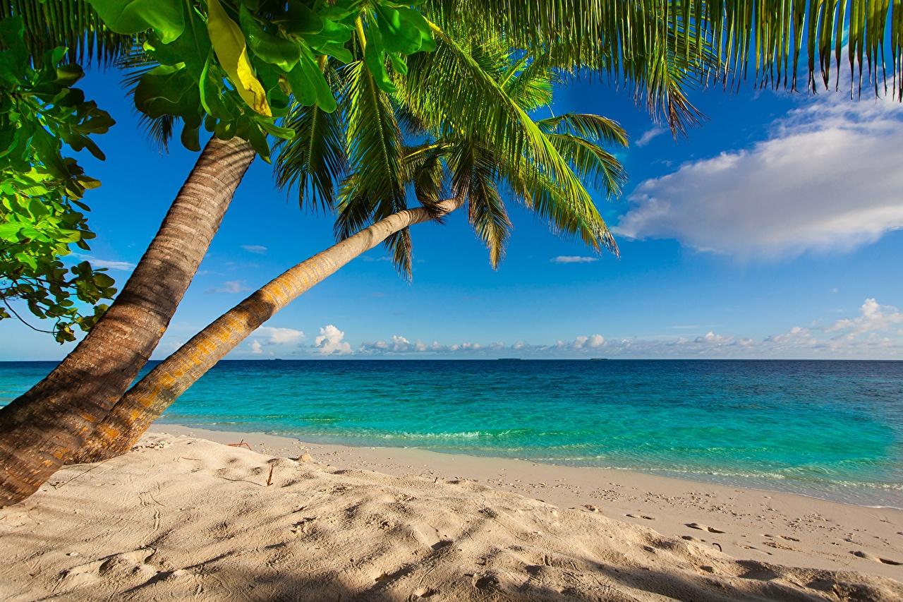 обои для рабочего стола берег пляжи № 598802 загрузить