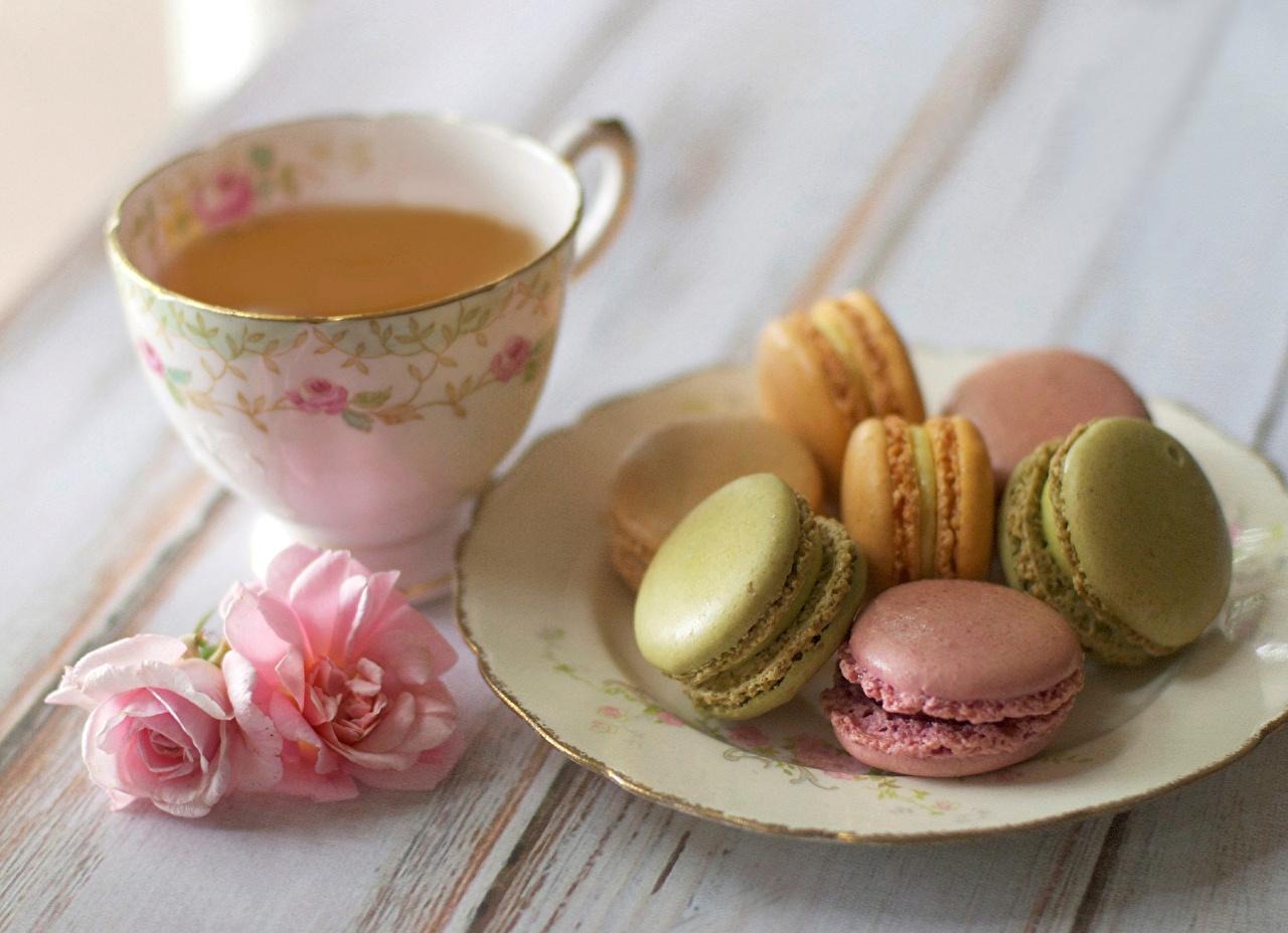 Напитки Чай Печенье Сладости Тарелка Макарон Еда