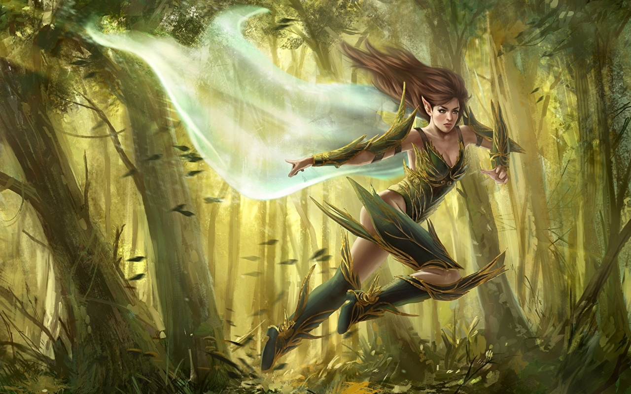 Fantasy art elves hardcore photo