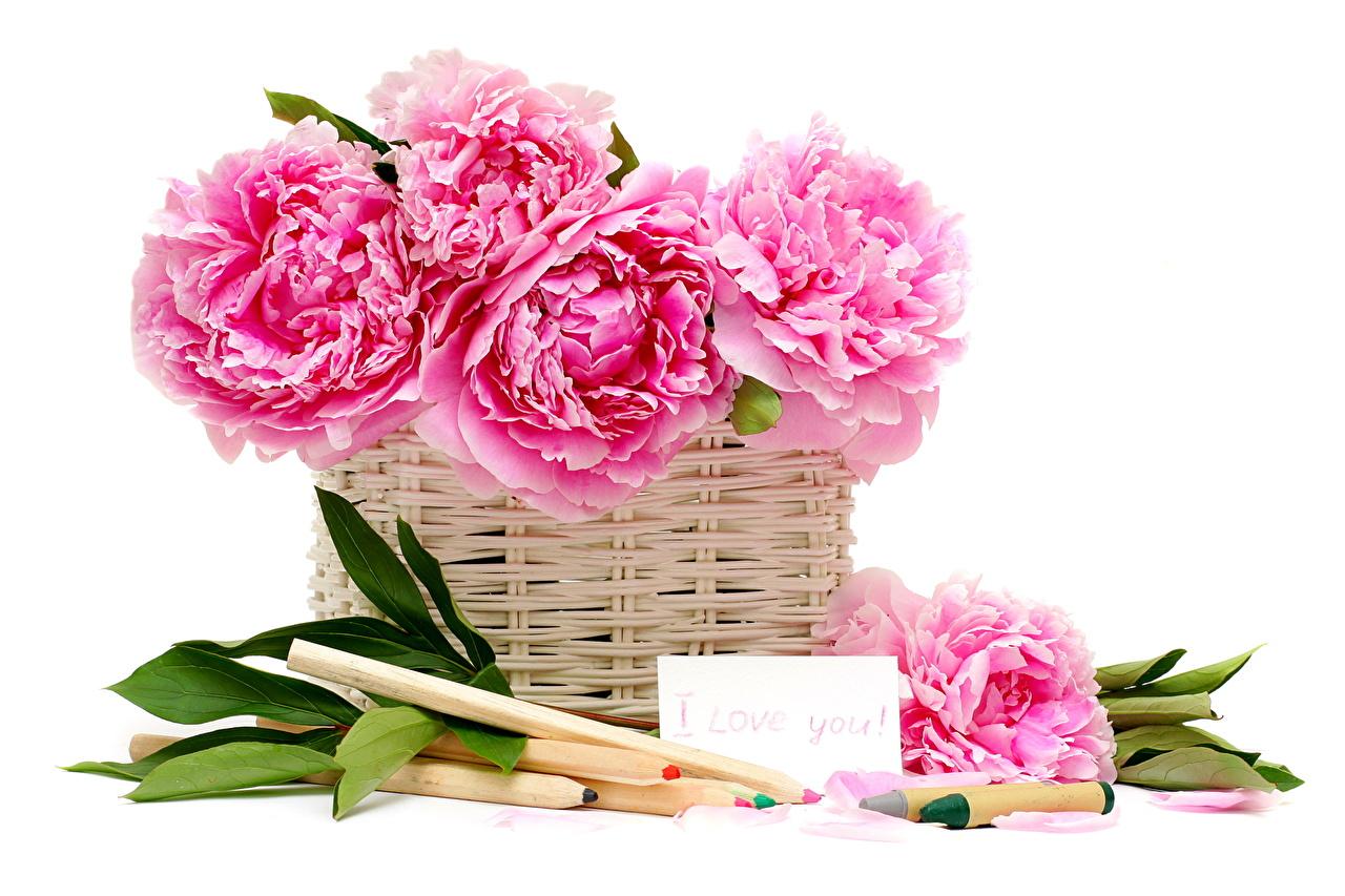 Открытка с днем рождения пожилой женщине с пышными цветами