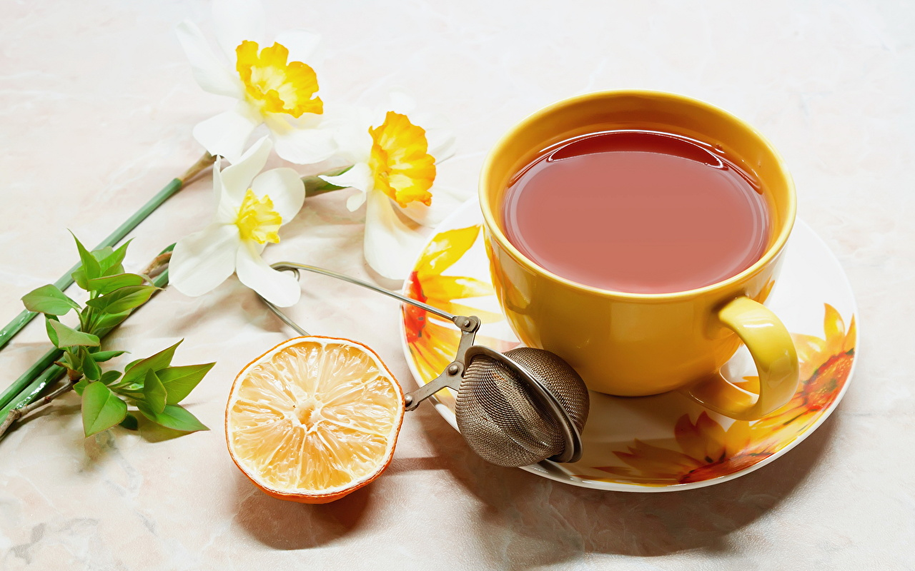 Напитки Чай Орхидеи Чашка Блюдце Еда Цветы