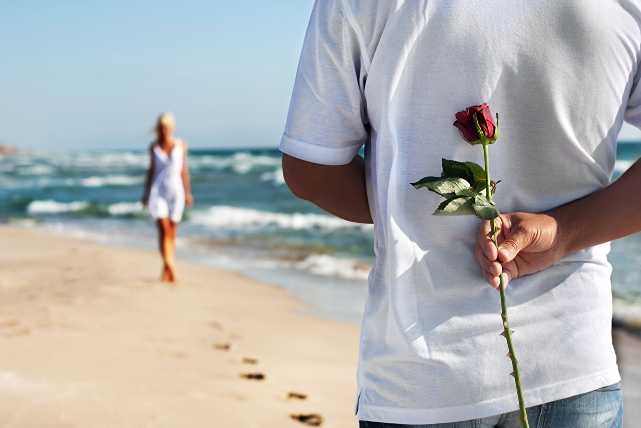 Цветок настоящая любовь
