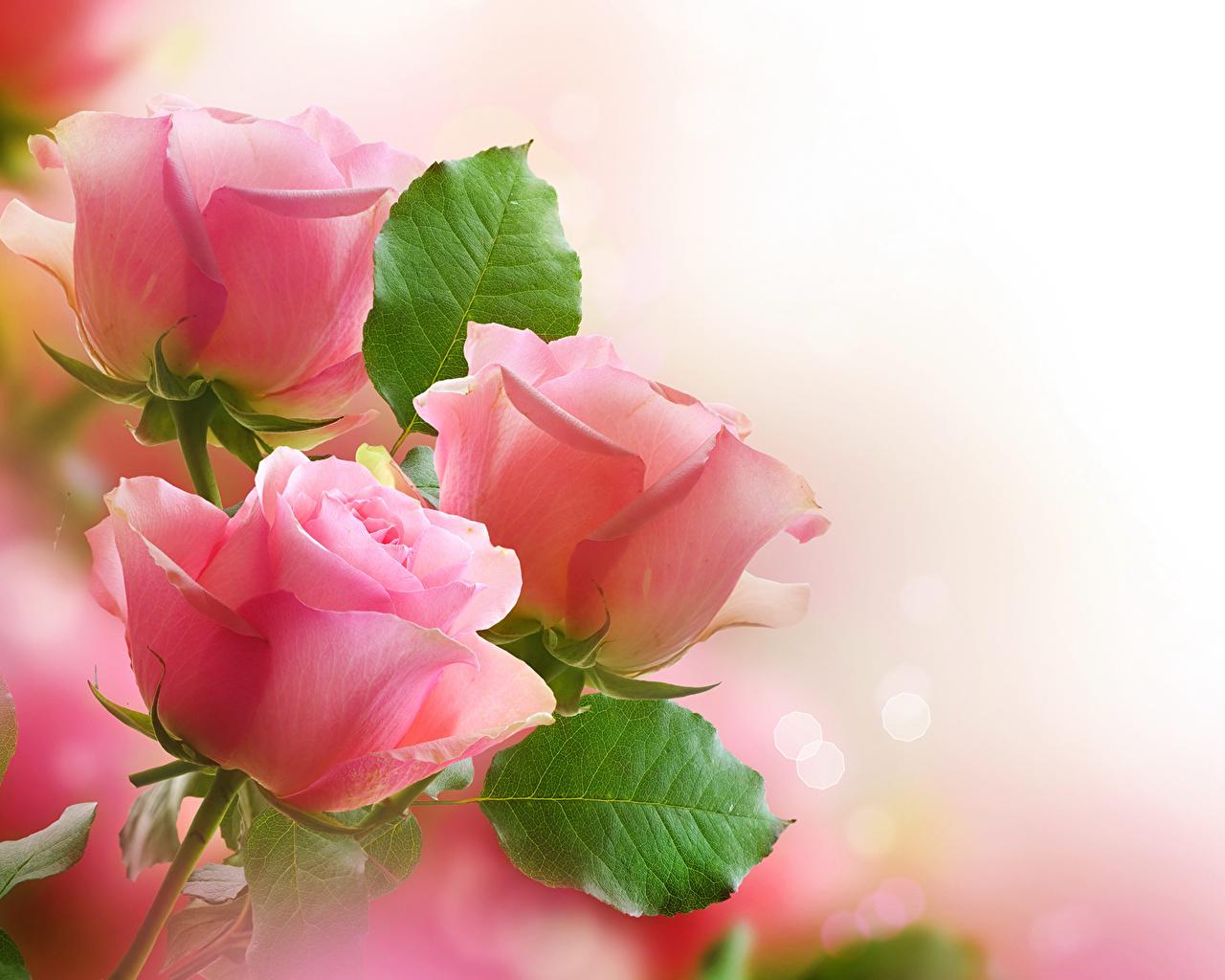 Валентинки поздравления для друга