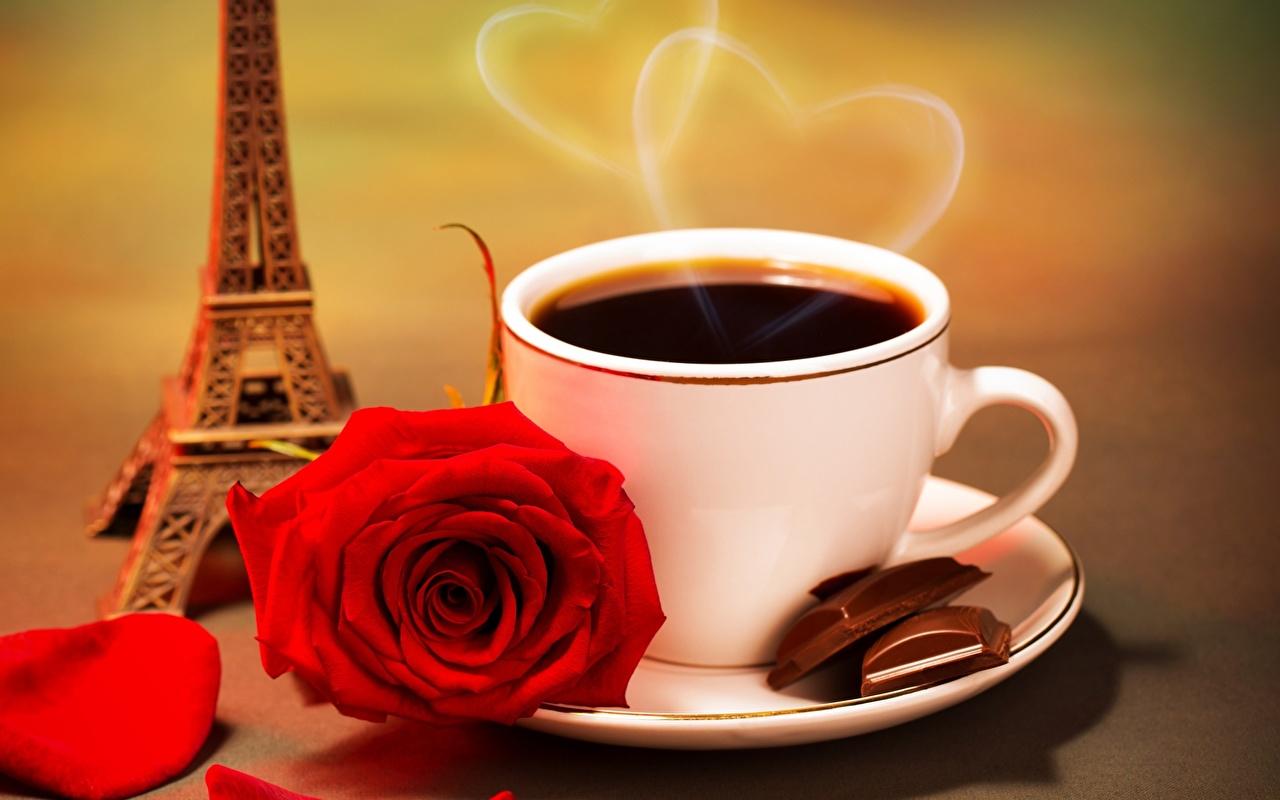 Напитки Кофе Розы Чашка Блюдце Эйфелева башня Еда