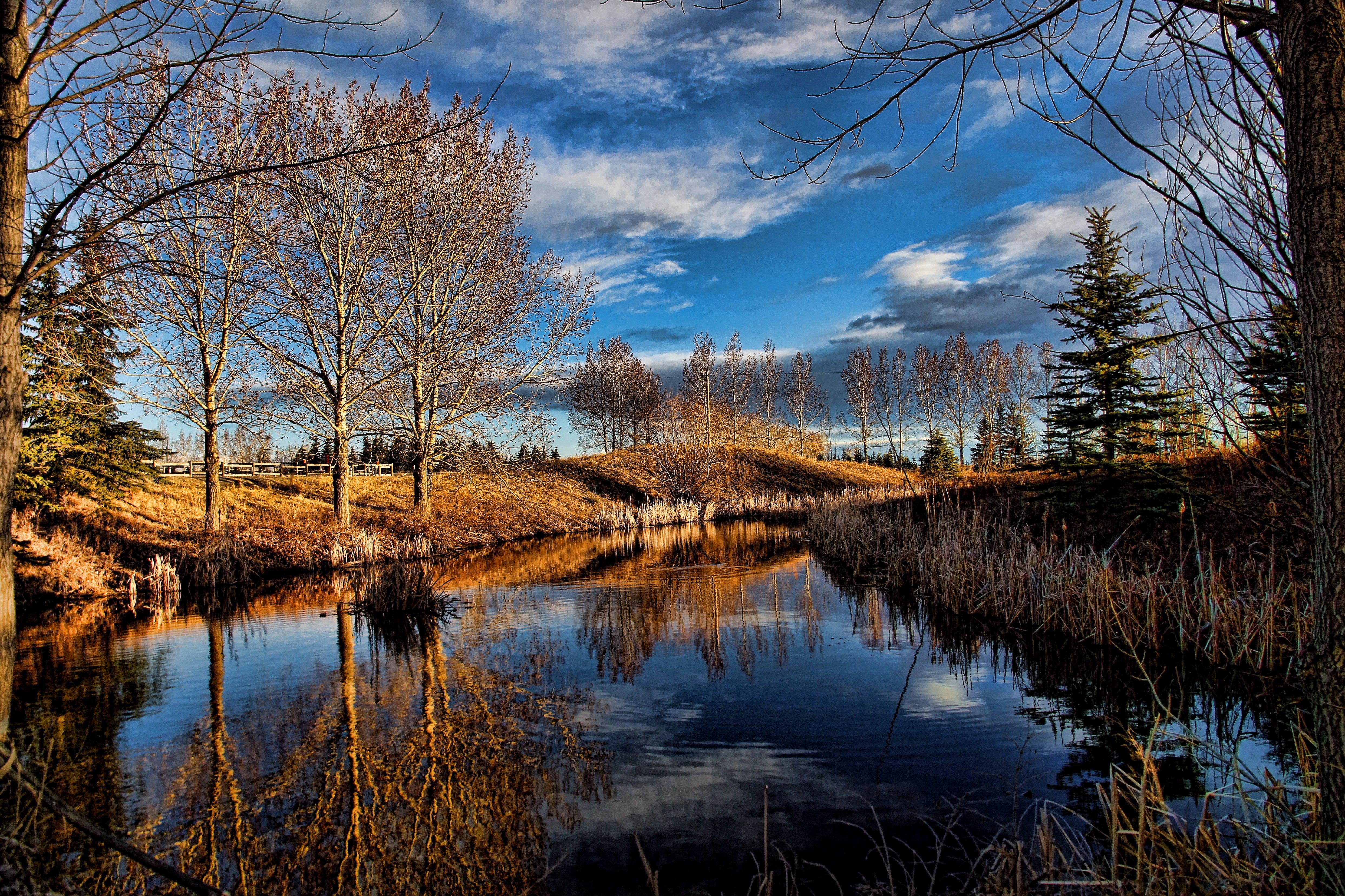 природа озеро деревья небо оссень  № 2535993 без смс