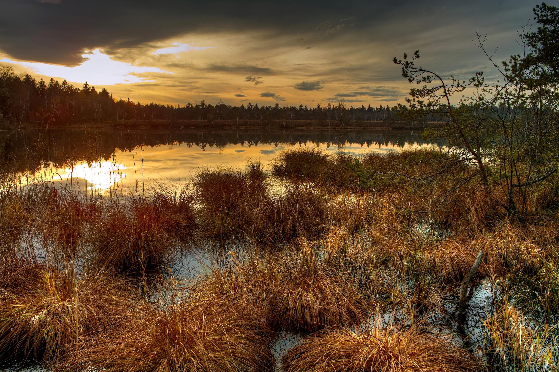 закат озеро осень трава  № 1020759 загрузить