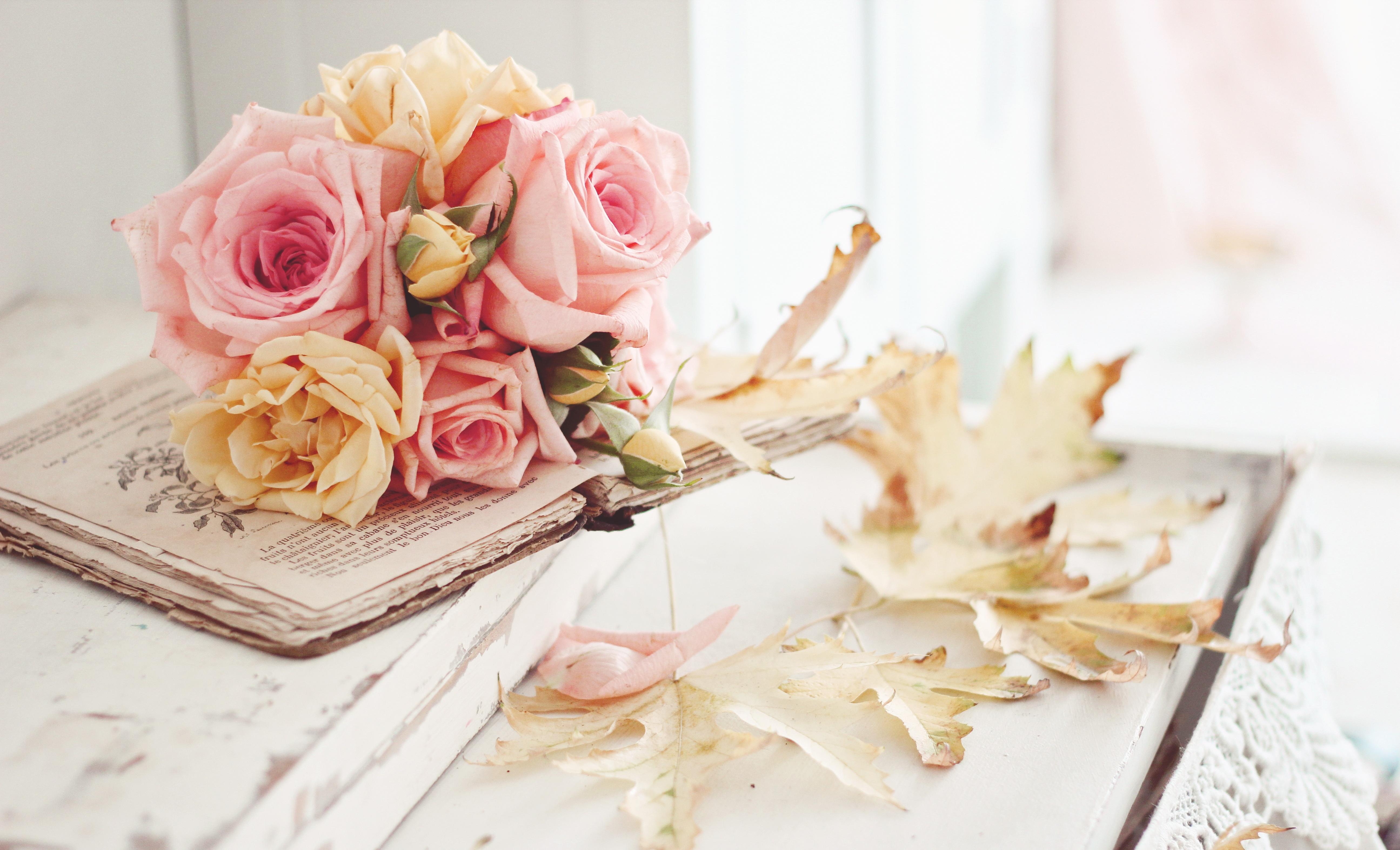 обои на рабочий стол цветы книги № 648742  скачать
