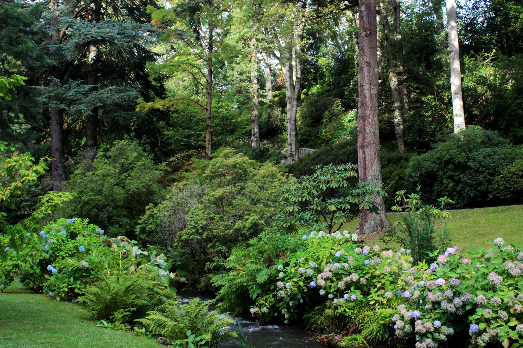 Bodnant gardens picnic