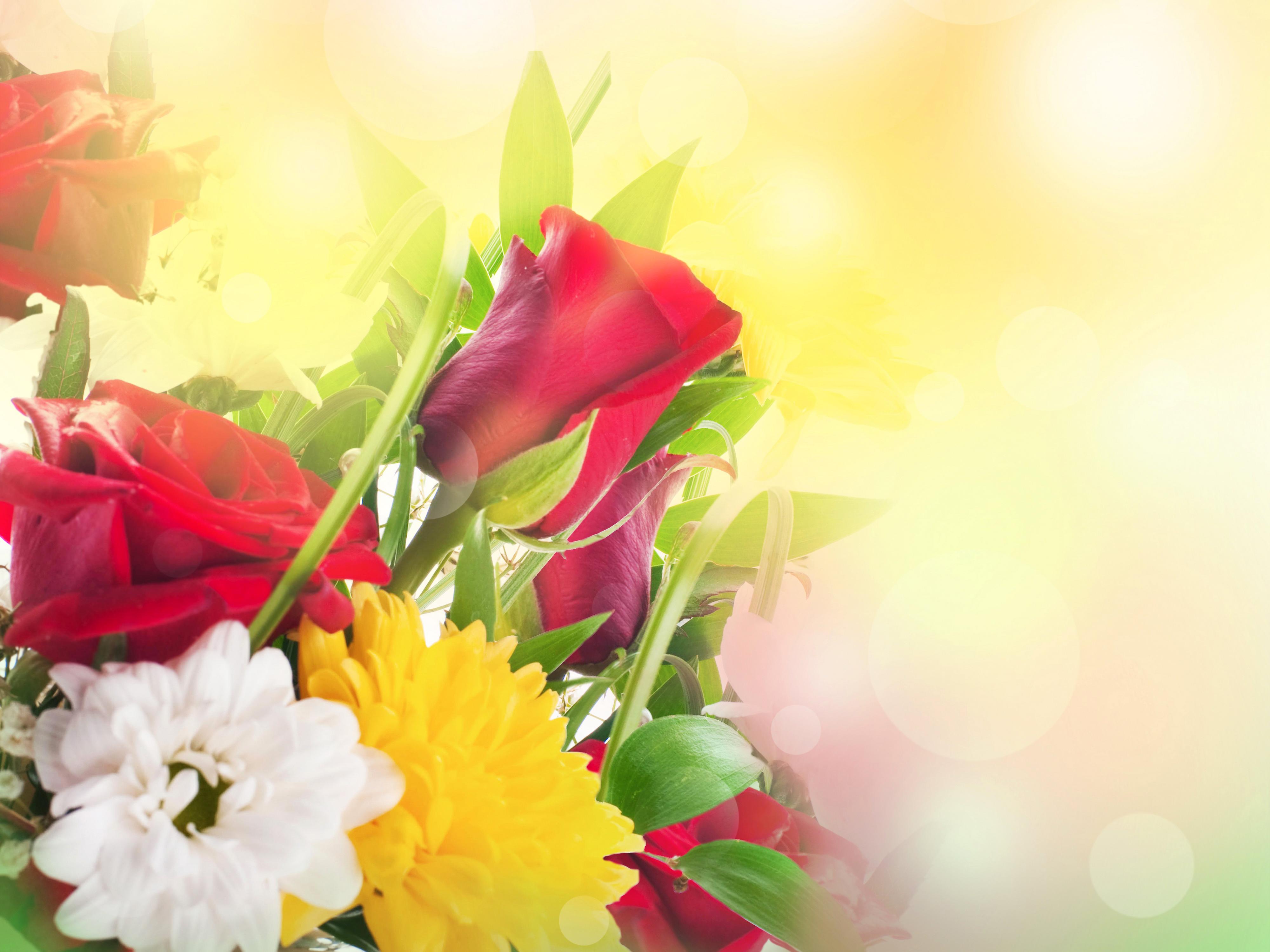 Картинки фон с цветами для поздравления