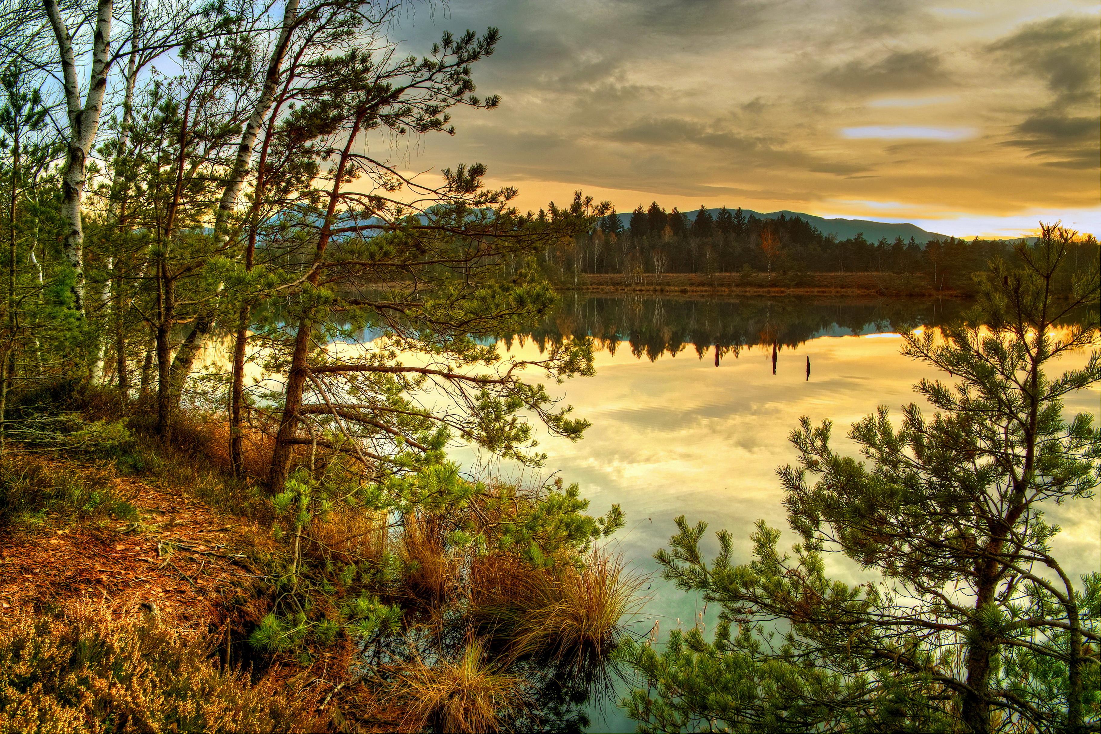 обои на рабочий стол осень природа река озеро лес № 241675 загрузить