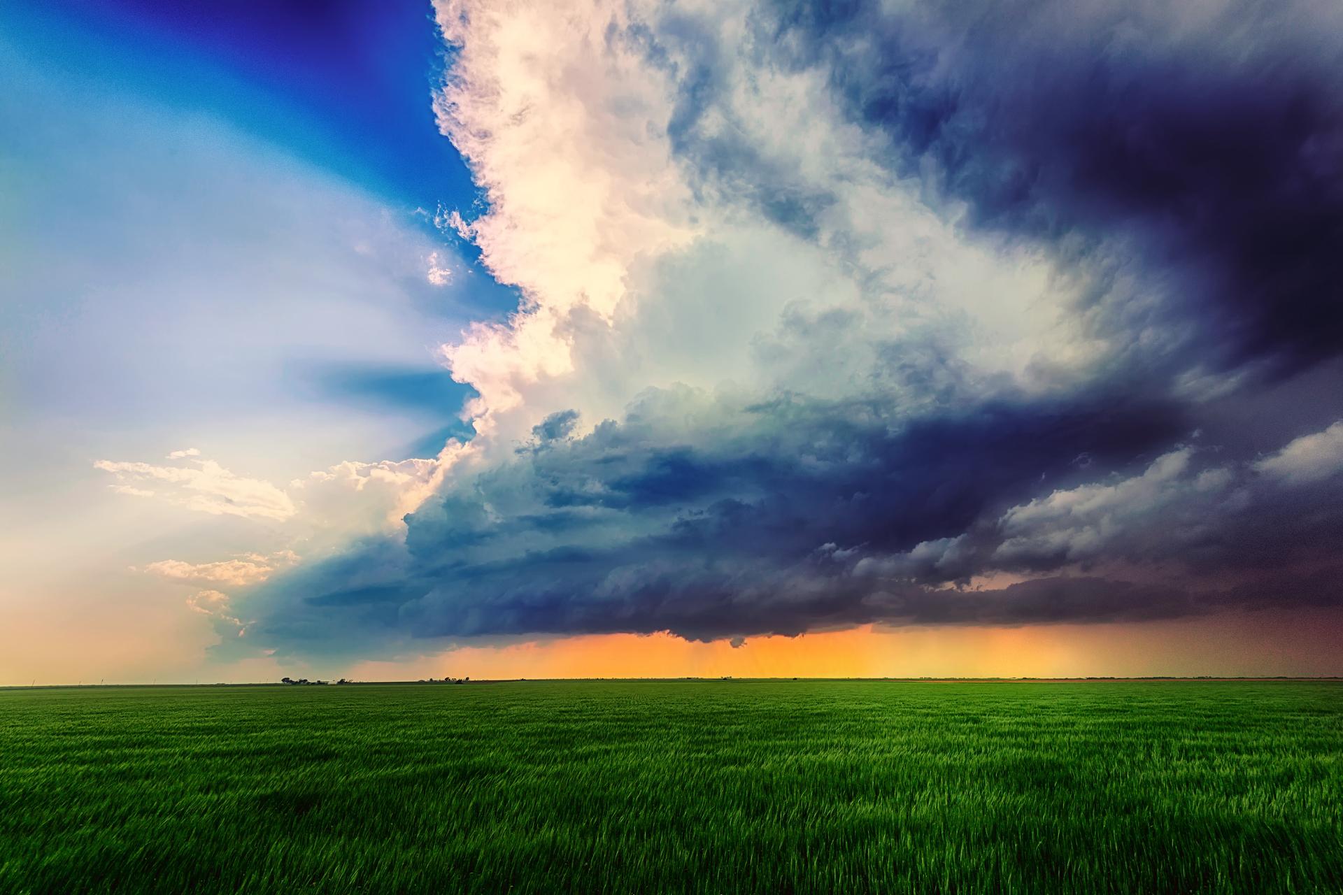 природа поле горизонт  № 3896403 без смс