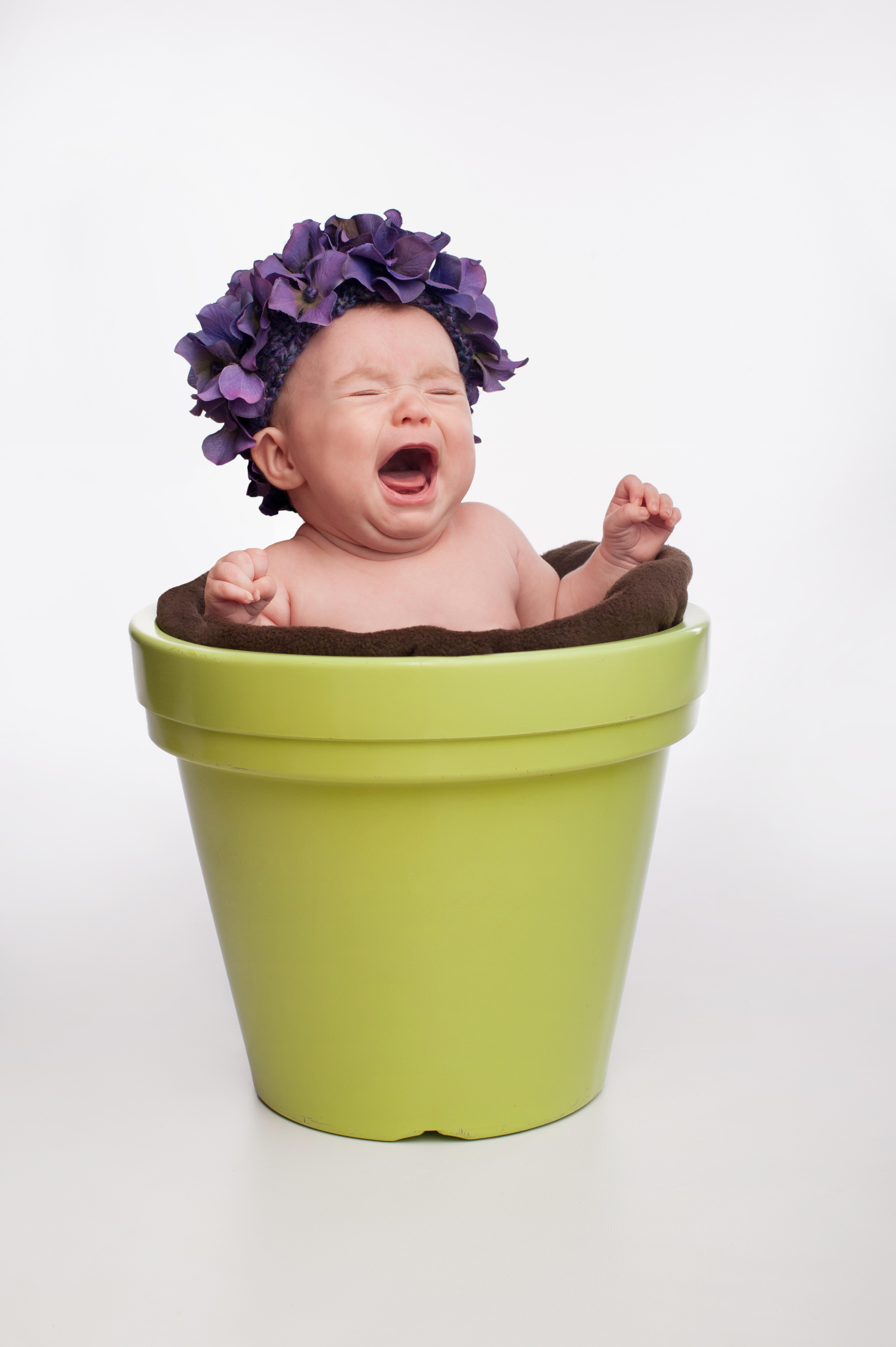 Ребенок на горшке: фото и картинки ребенок на горшке 73