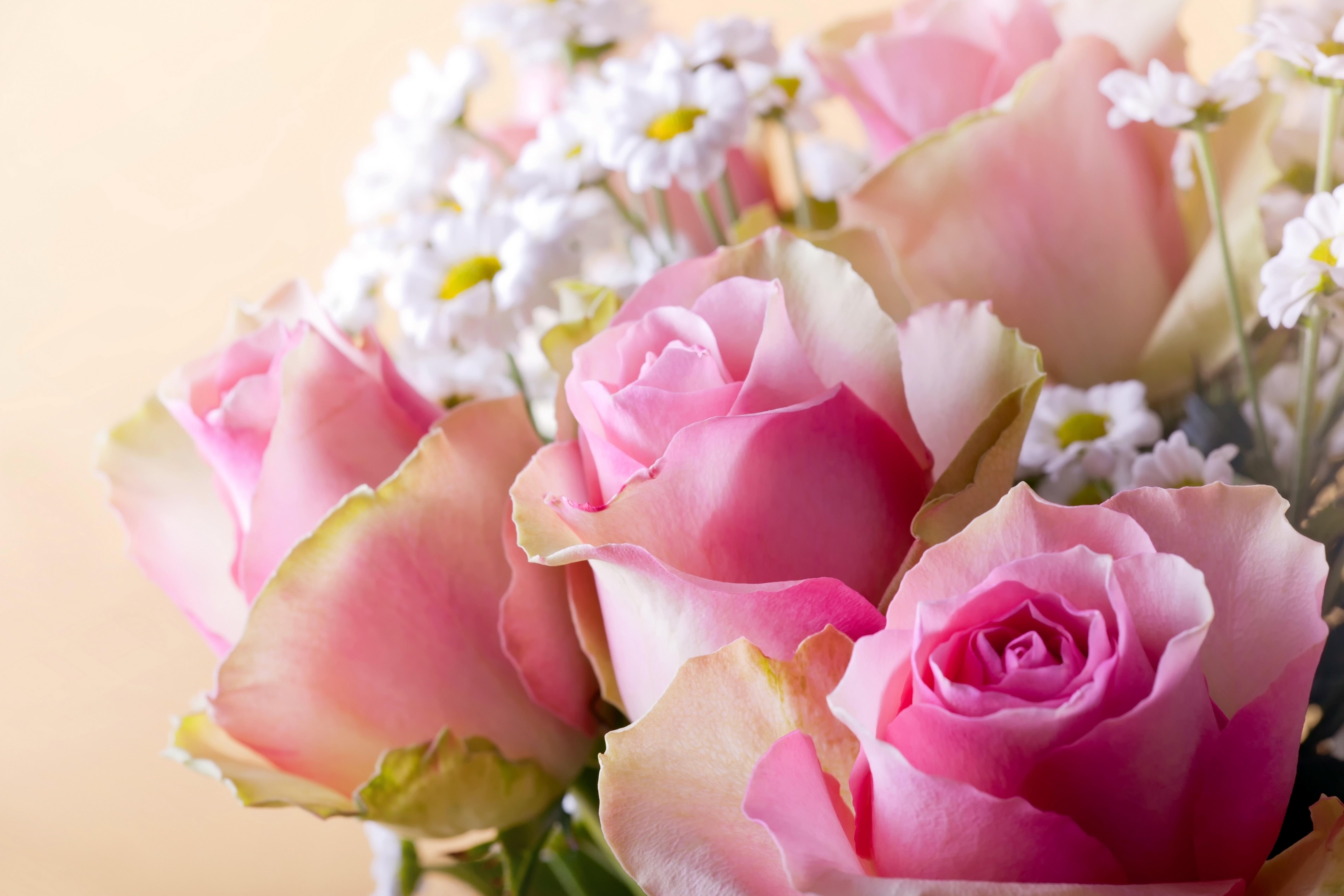букеты цветов фото хризантемы: