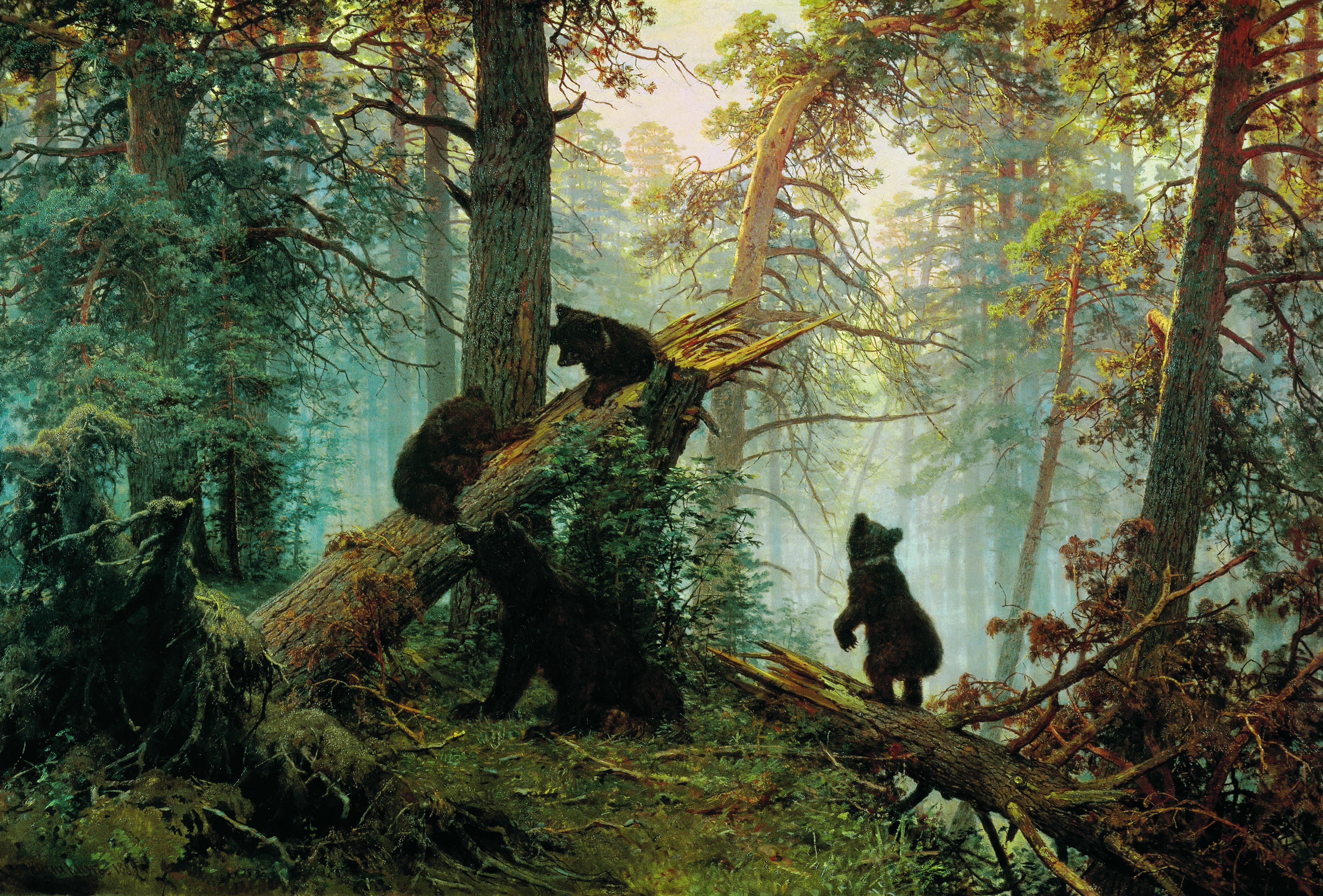 Картина шишкин лес где находится