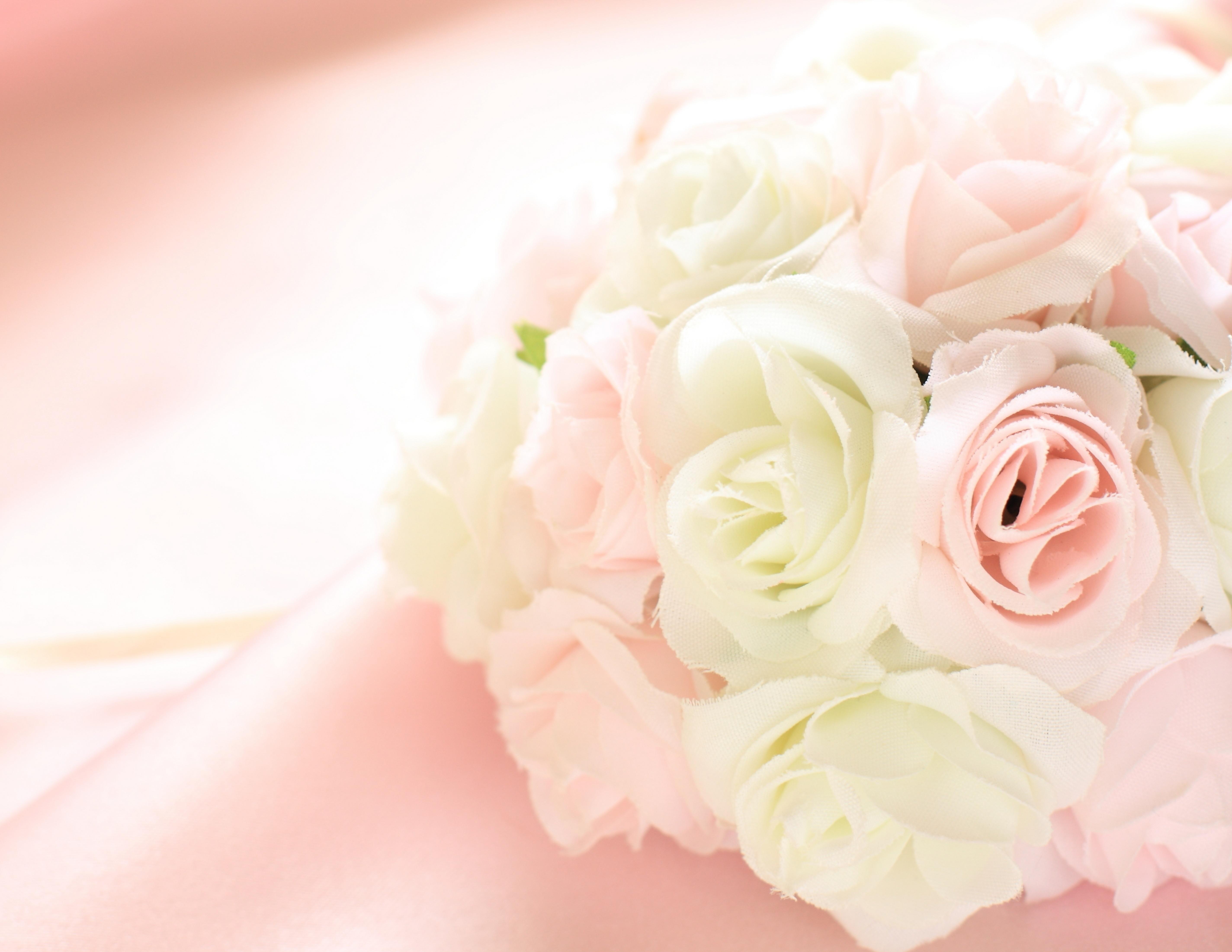 нежно-кремовые свадебные розы  № 1323099  скачать