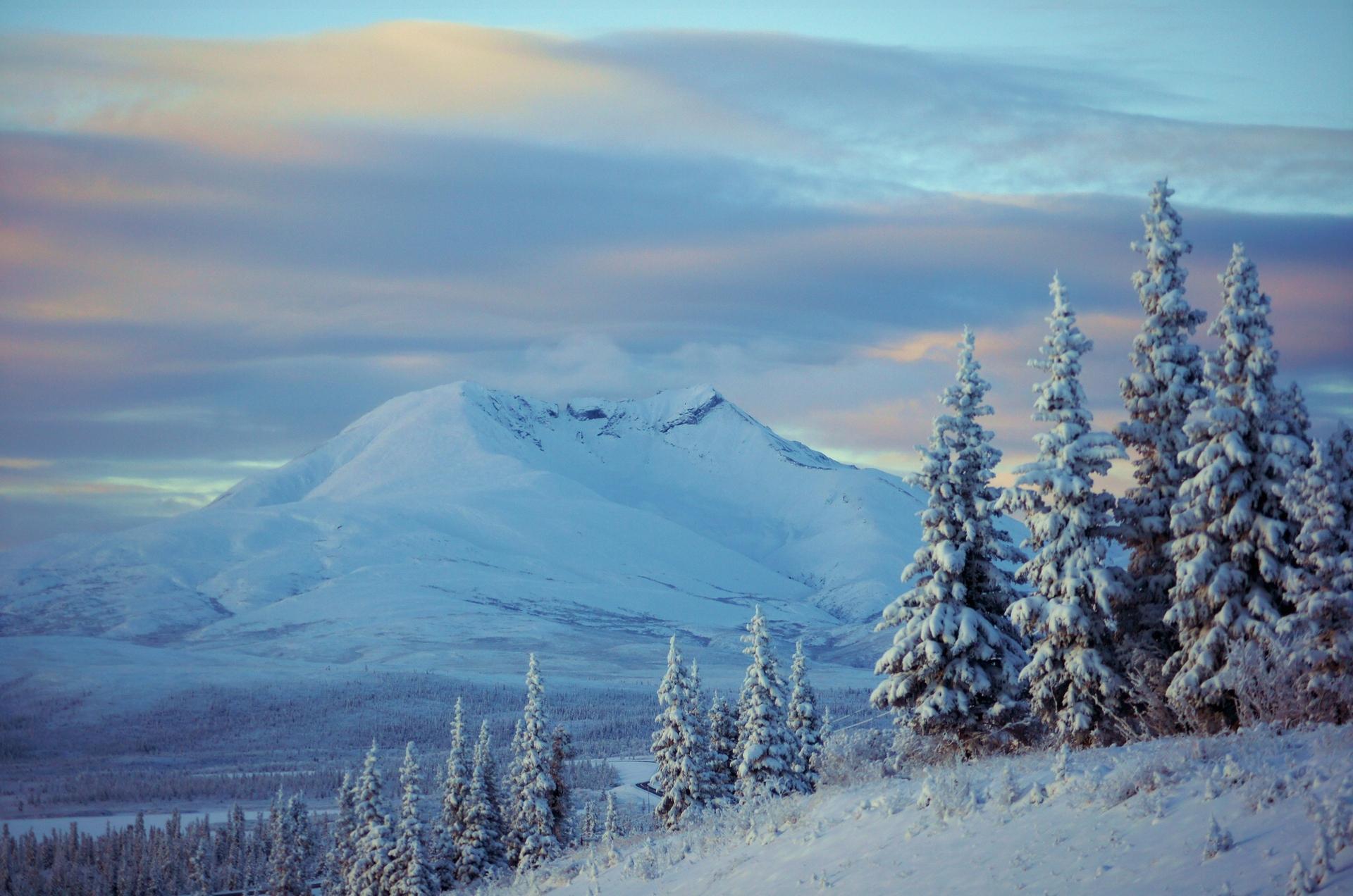снег ели гора snow ate mountain  № 2479230 загрузить