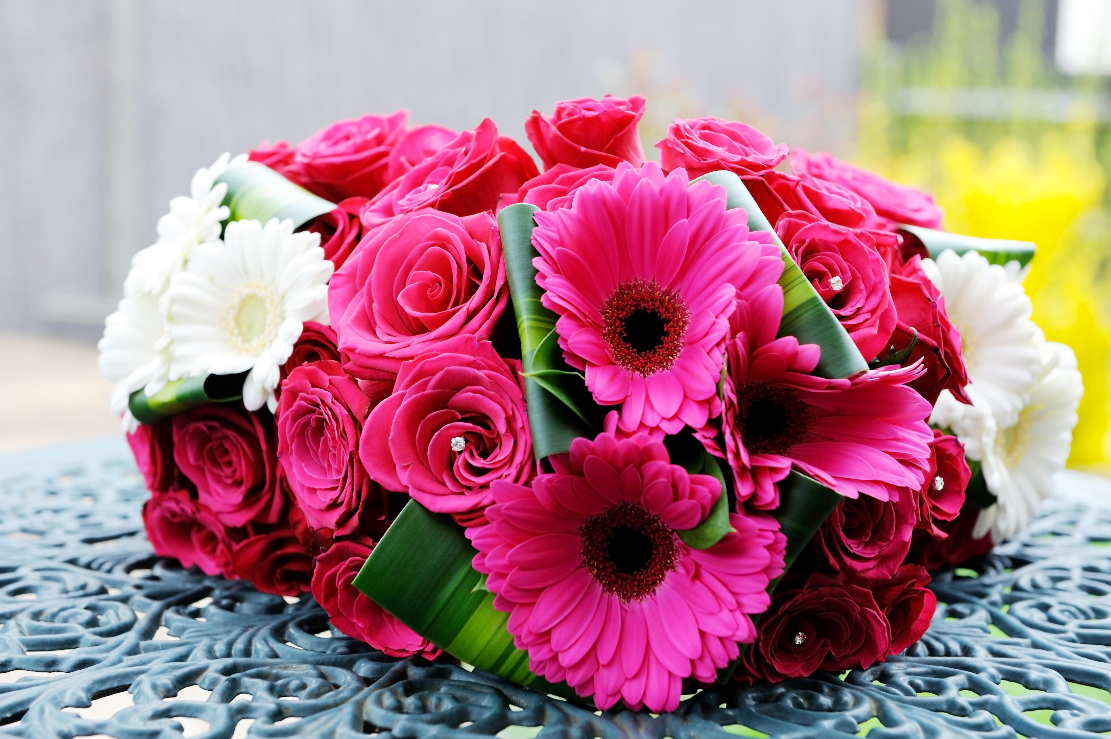 Фото герберы цветы букеты