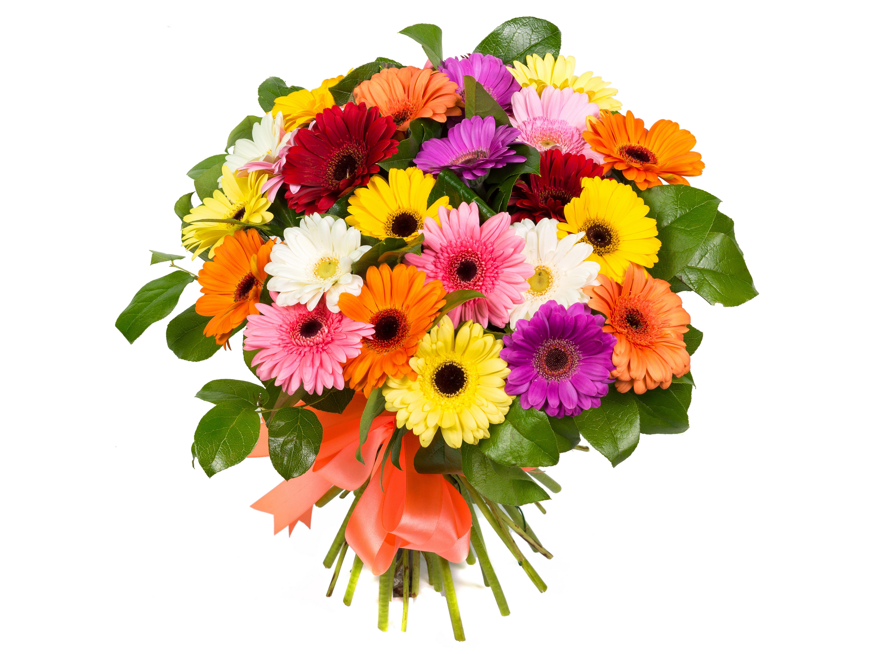 Букет красивых цветов картинка