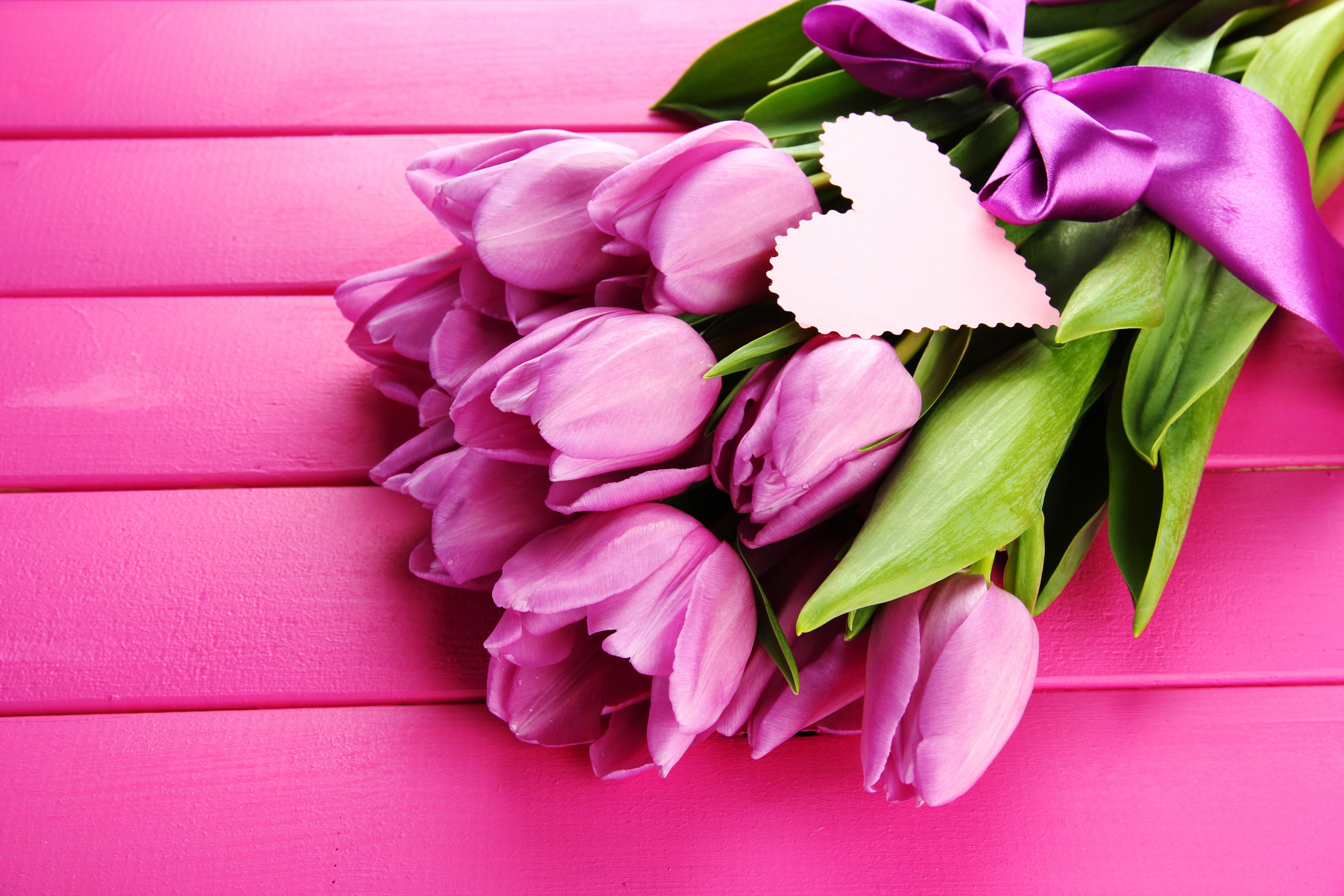 фото цветов в хорошем качестве: