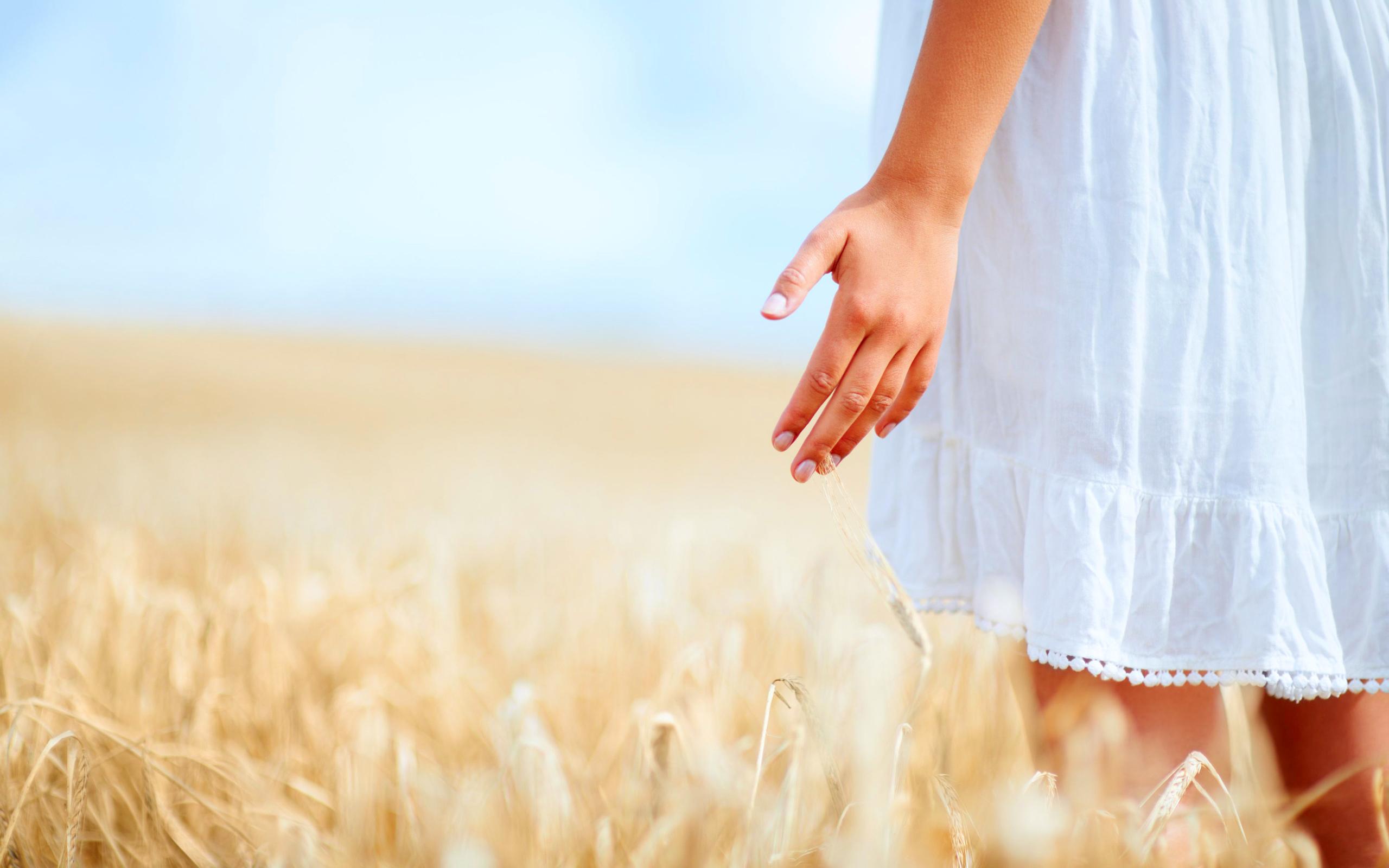 Девушка в поле с колосьями  № 1822104 загрузить